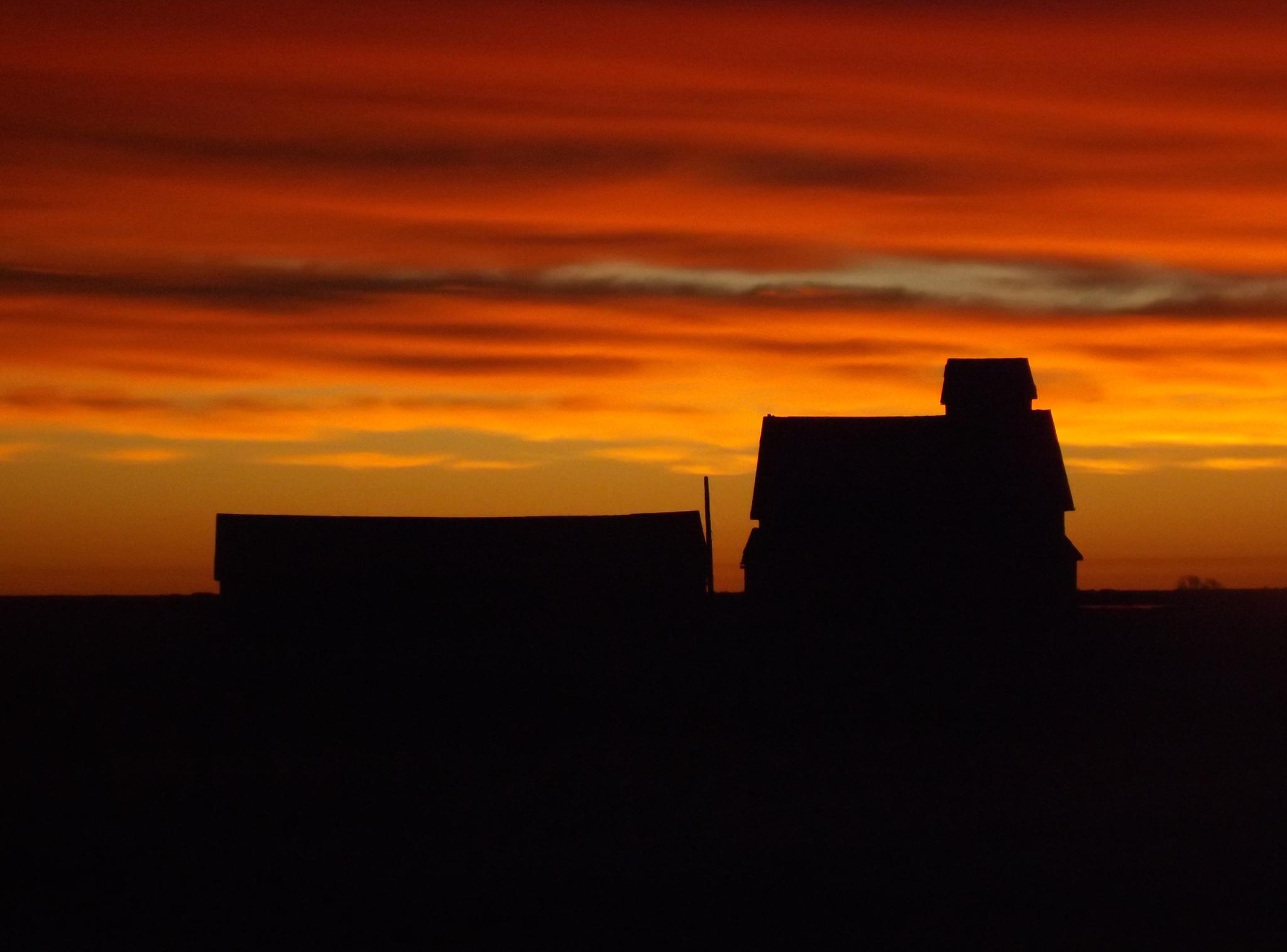 """morning glory.... Saskatchewan """" why my third eye saw """" by Rhyland Cottingham"""