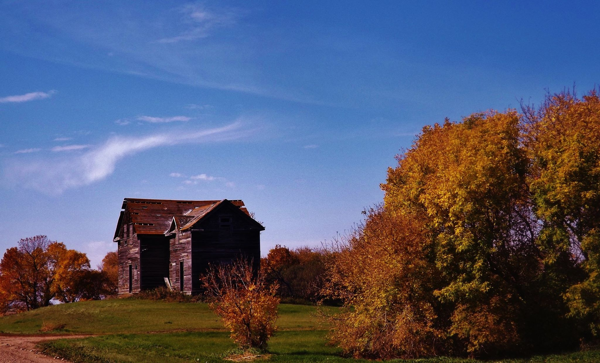 fall on the prairies by Rhyland Cottingham