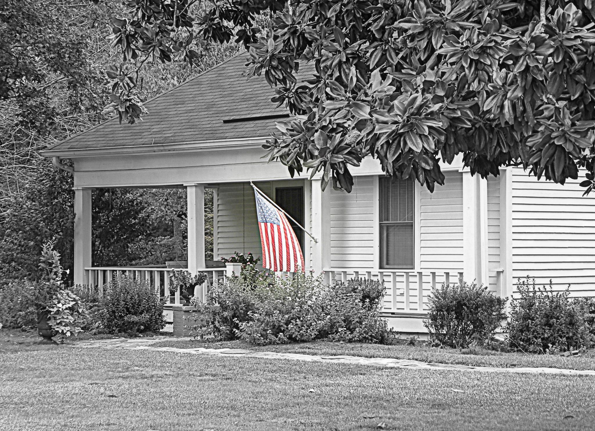 Patriotic Home   by Grace Lee
