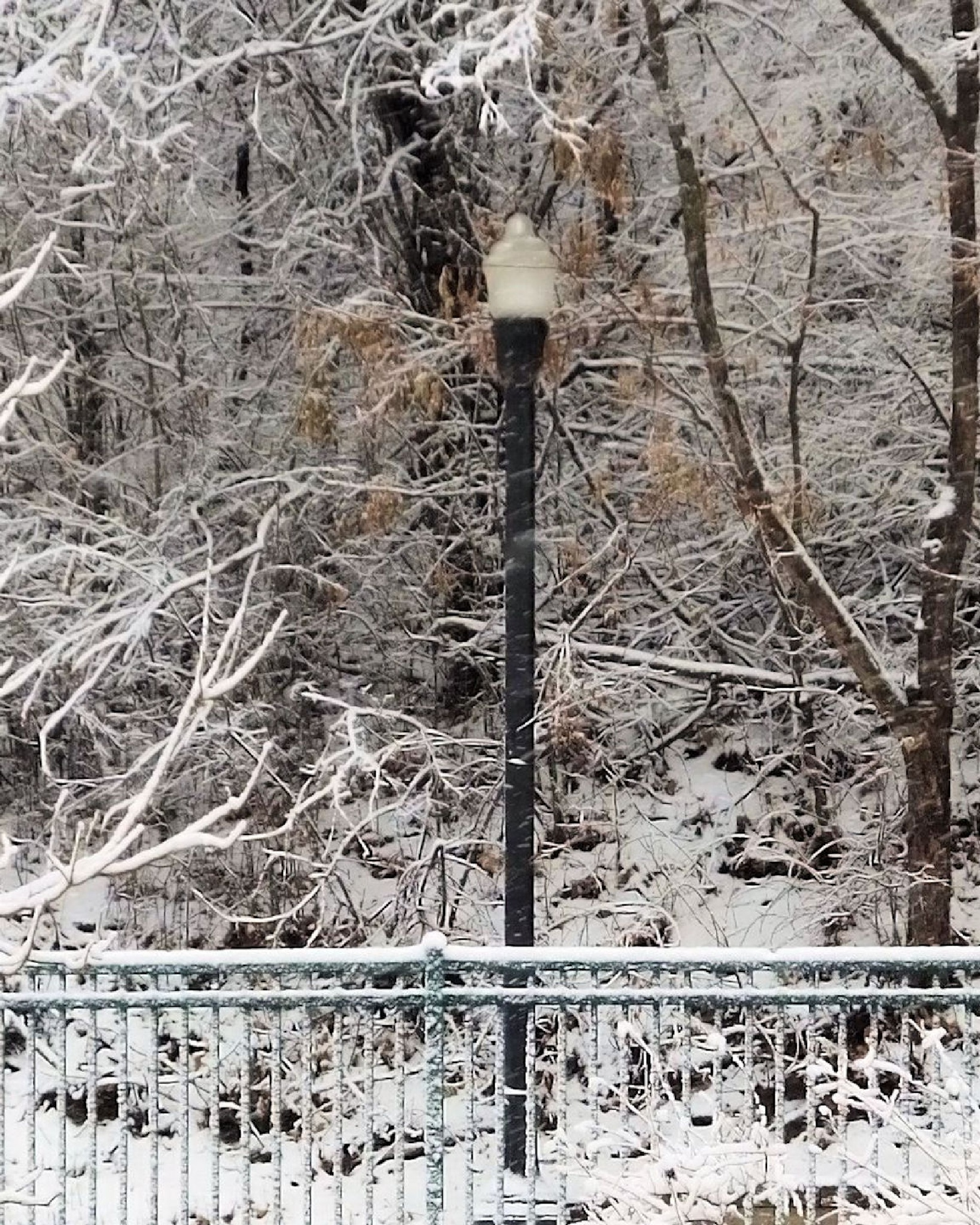 Lightpost In The Snow by Lynn A Marie