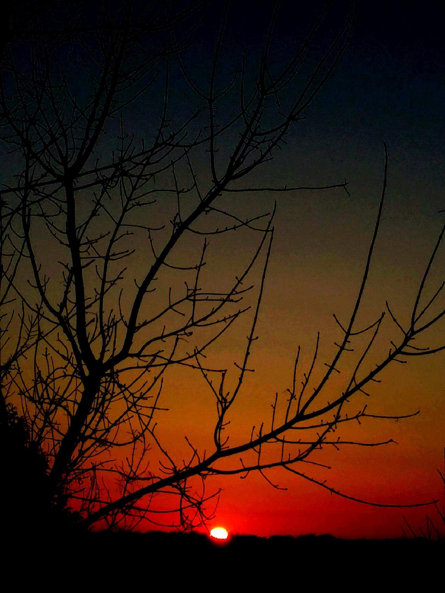Winter Sunset by keith.kinsland