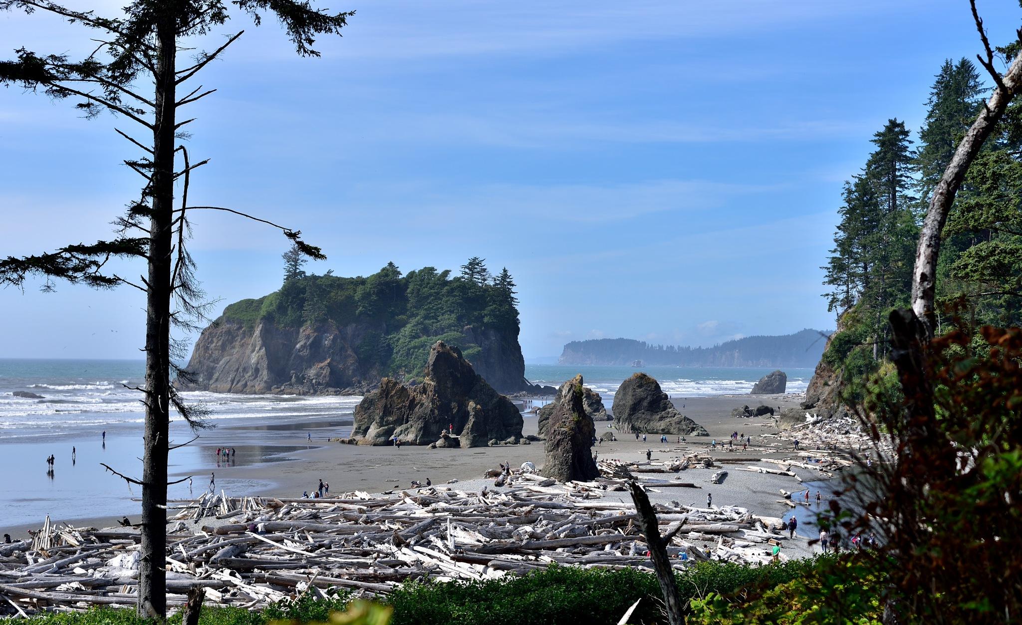 Ruby Beach, Washington by 808HabeloD.