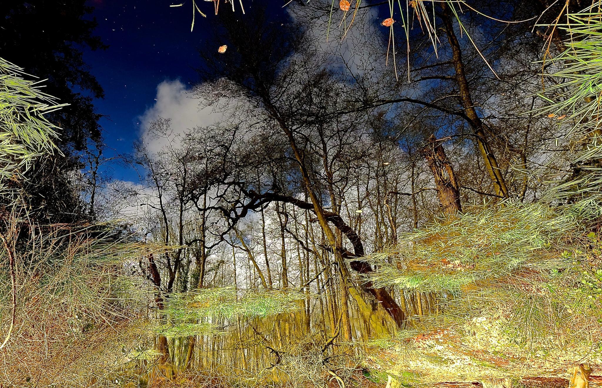 Mirror by Ropje