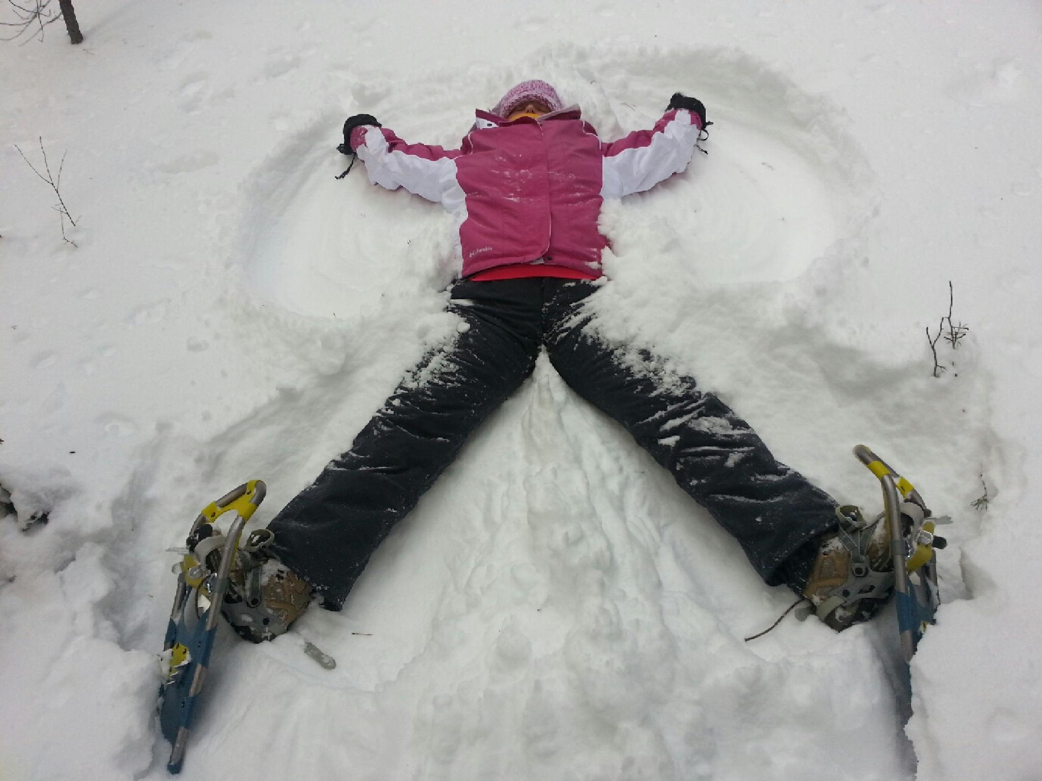 Snow Angel by valco123