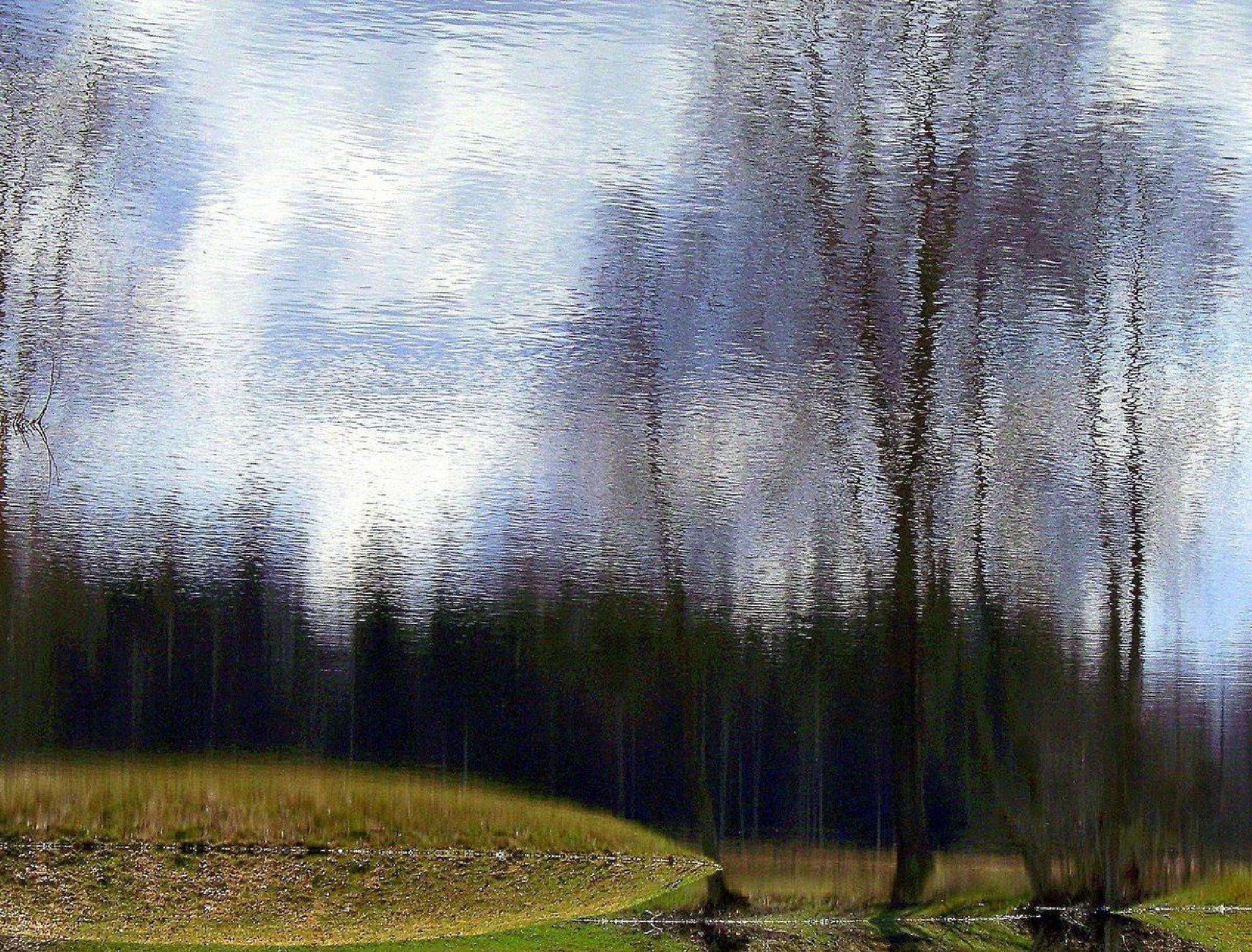 Untitled by Emilija Va