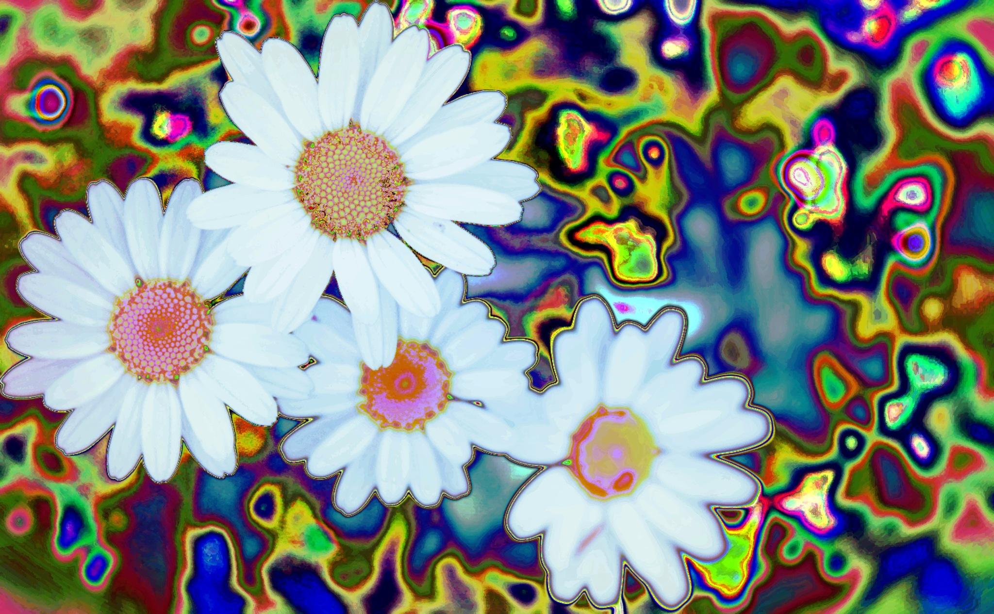 Daisy in Wonderland by LoryC