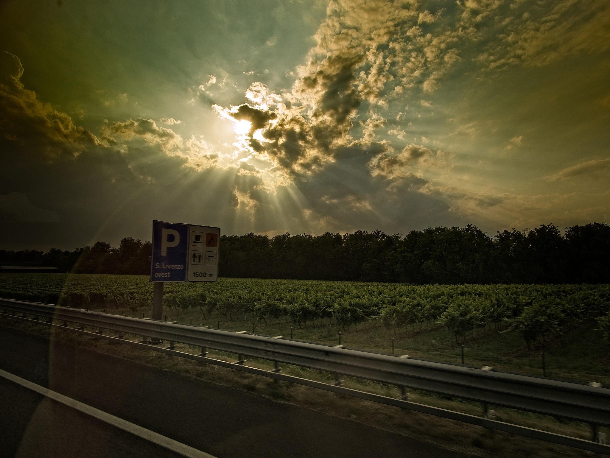 COACH TRIP by BugOlsson