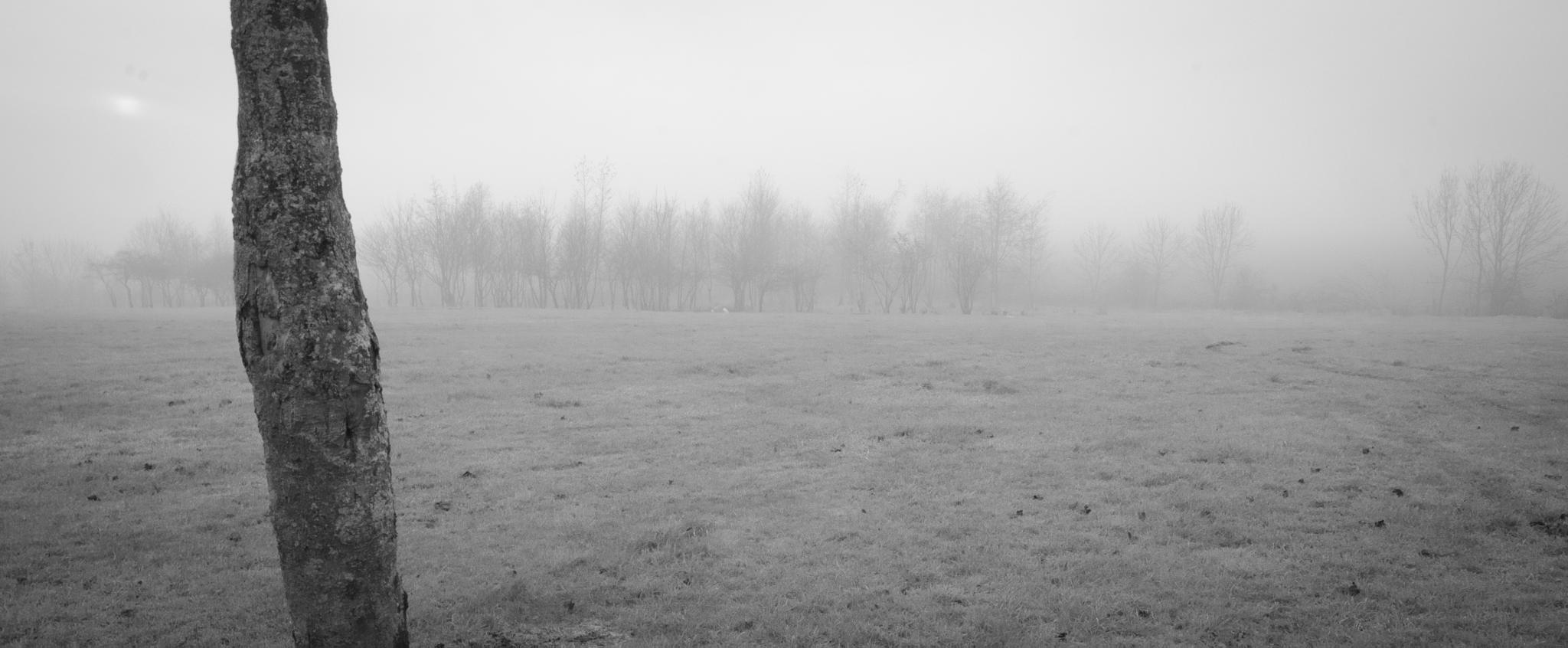 Hartlepool Mist3 by GreenLady121