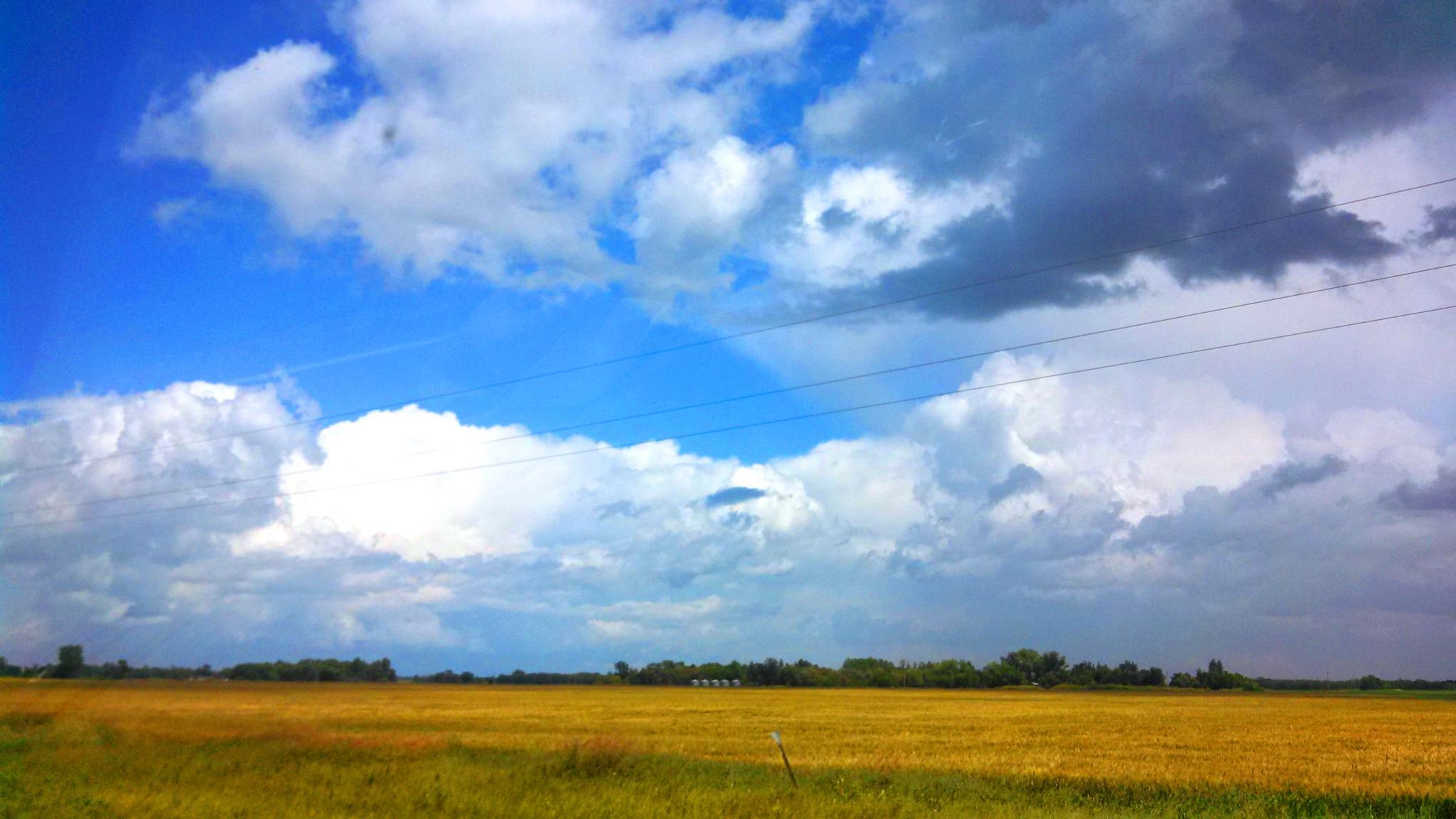 Cloud Alien by karen.askelson