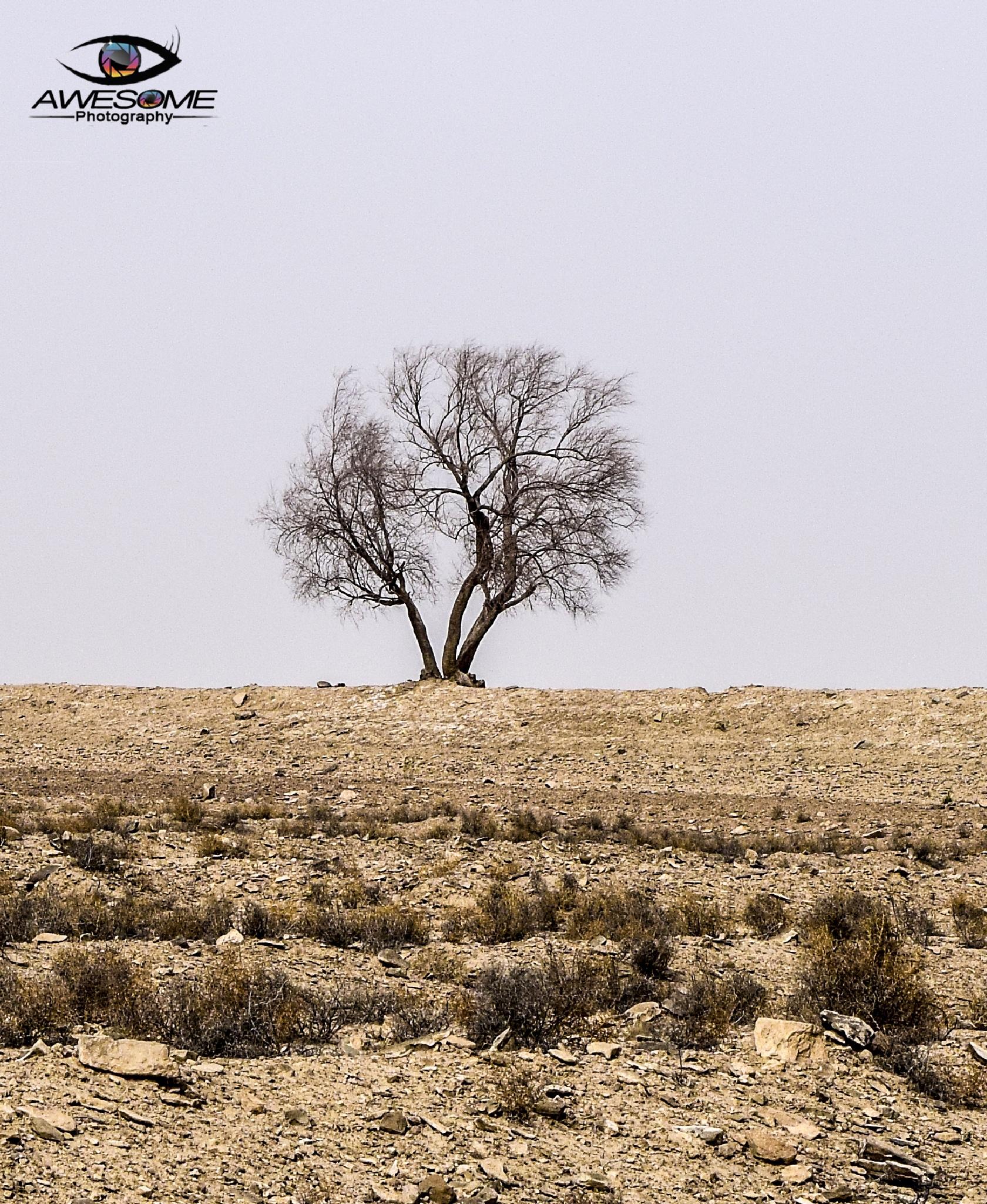 Untitled by Pirkani