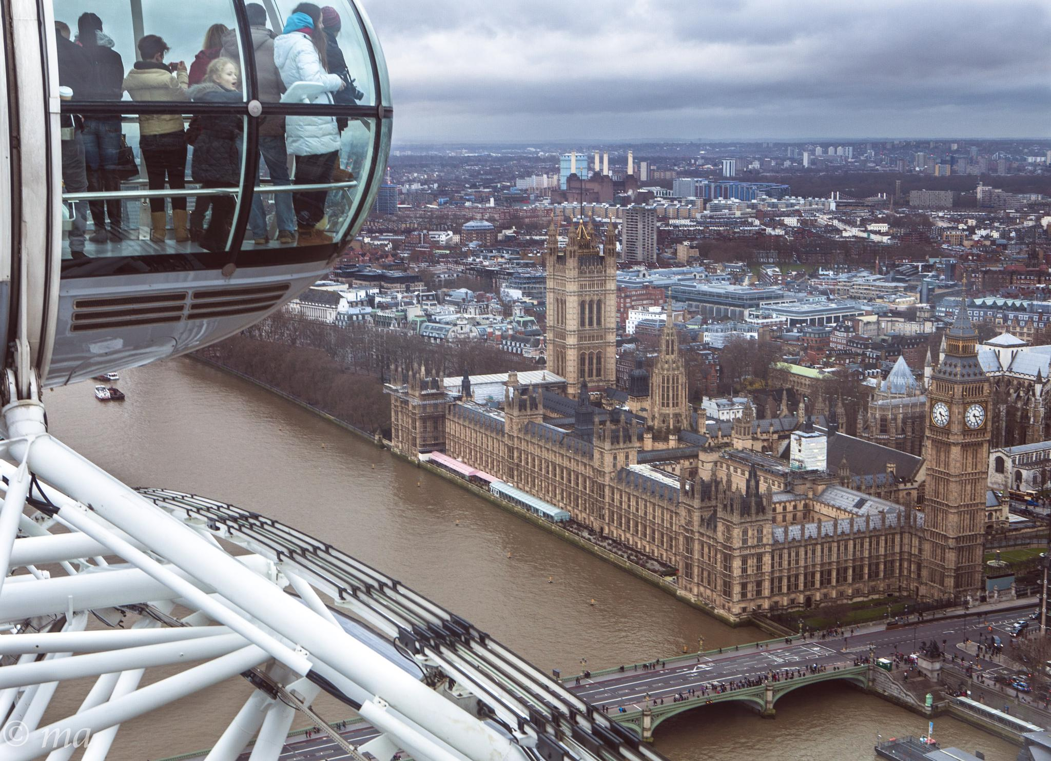 An Eye on Parliament! by Mark Andrews