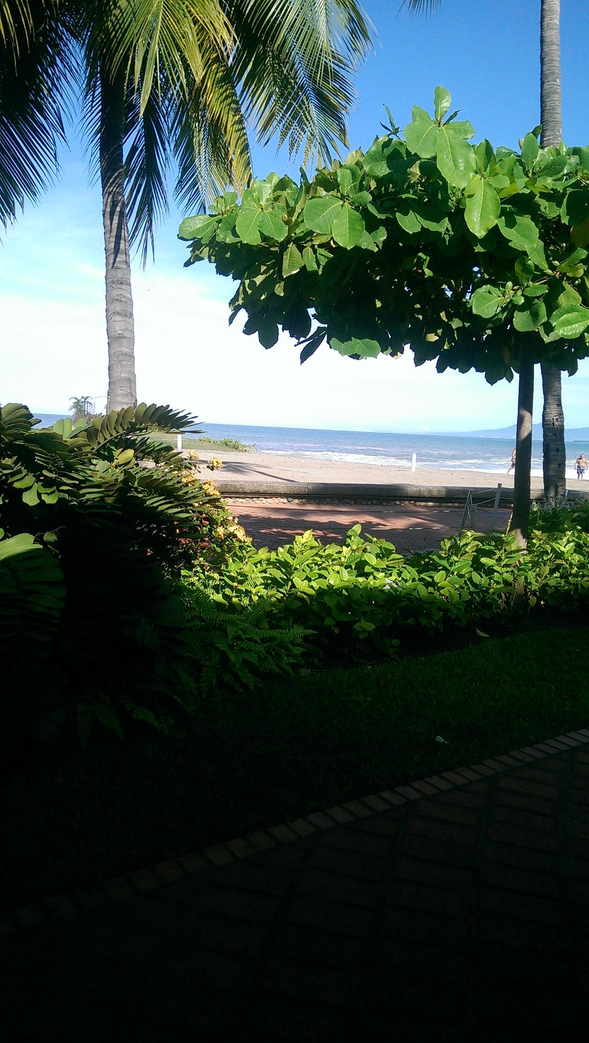 Puerto Vallarta Bougainvillea resort  by palo905