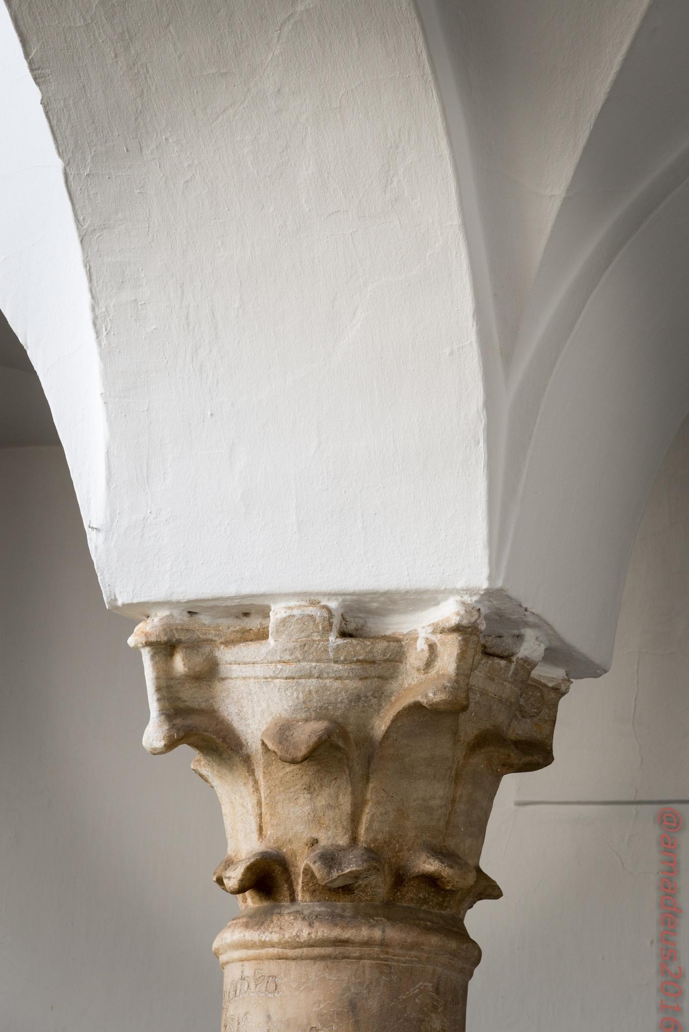 Roman capital by Amadeo Meg