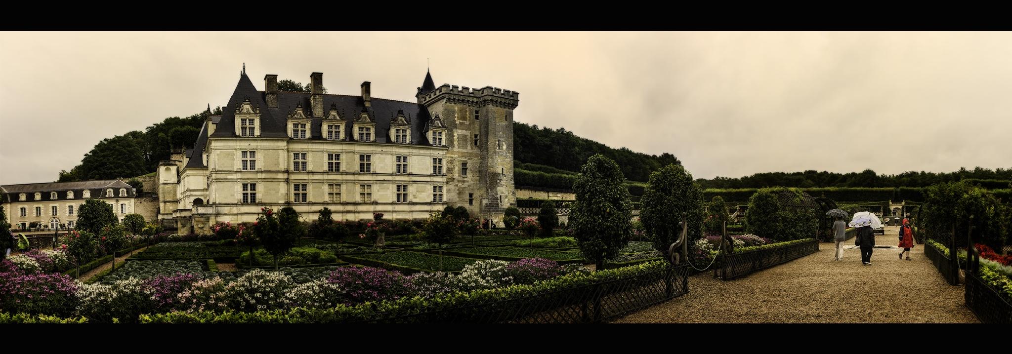 Château de Willandry by bolino