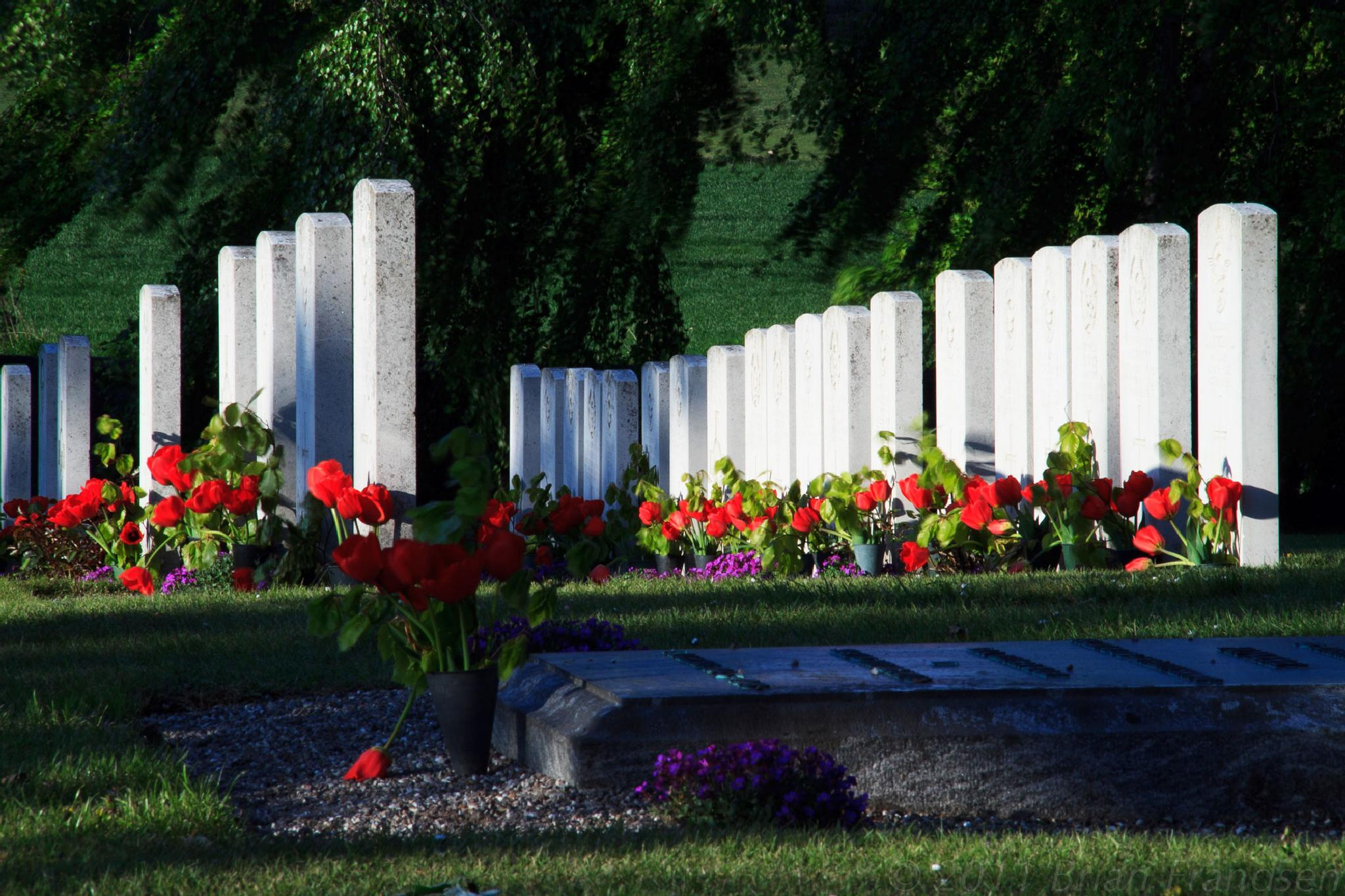 Svinoe Commonwealth War Graves by Brian Frandsen
