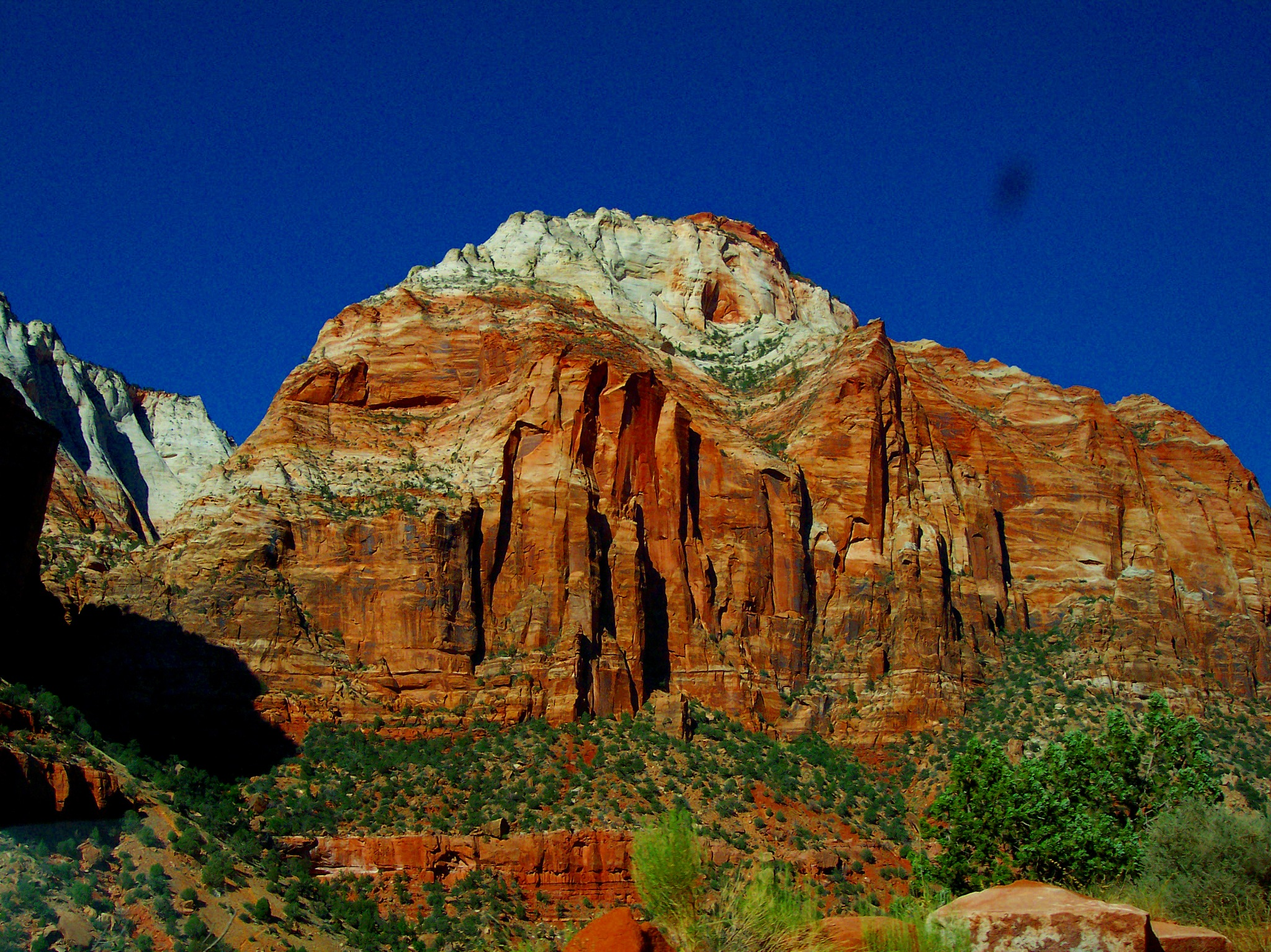 Zion National Park by alisa.wilkerson.5
