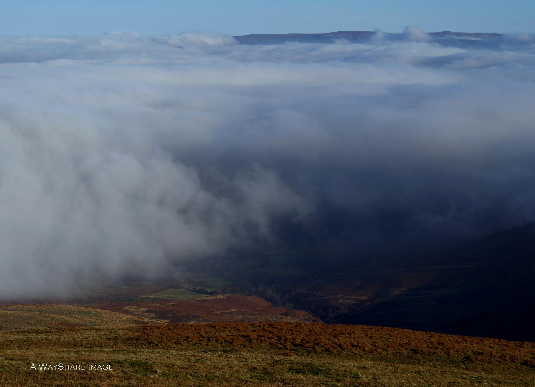 Valley cloud by Andrew Hill