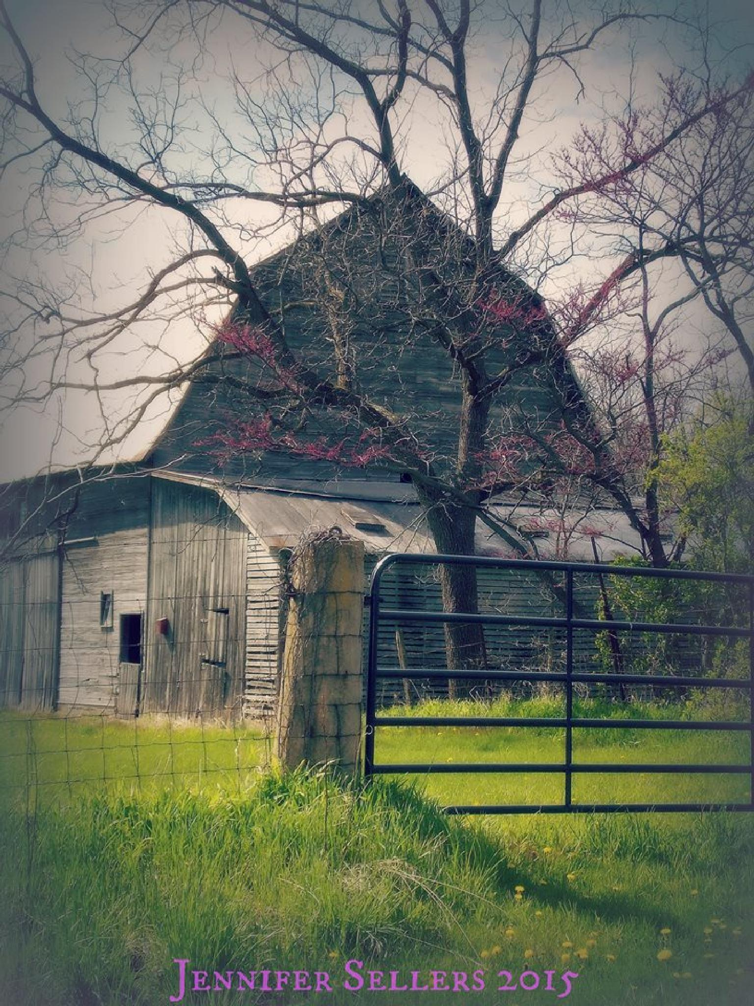 Barn in the Springtime by jennifer.t.sellers.9
