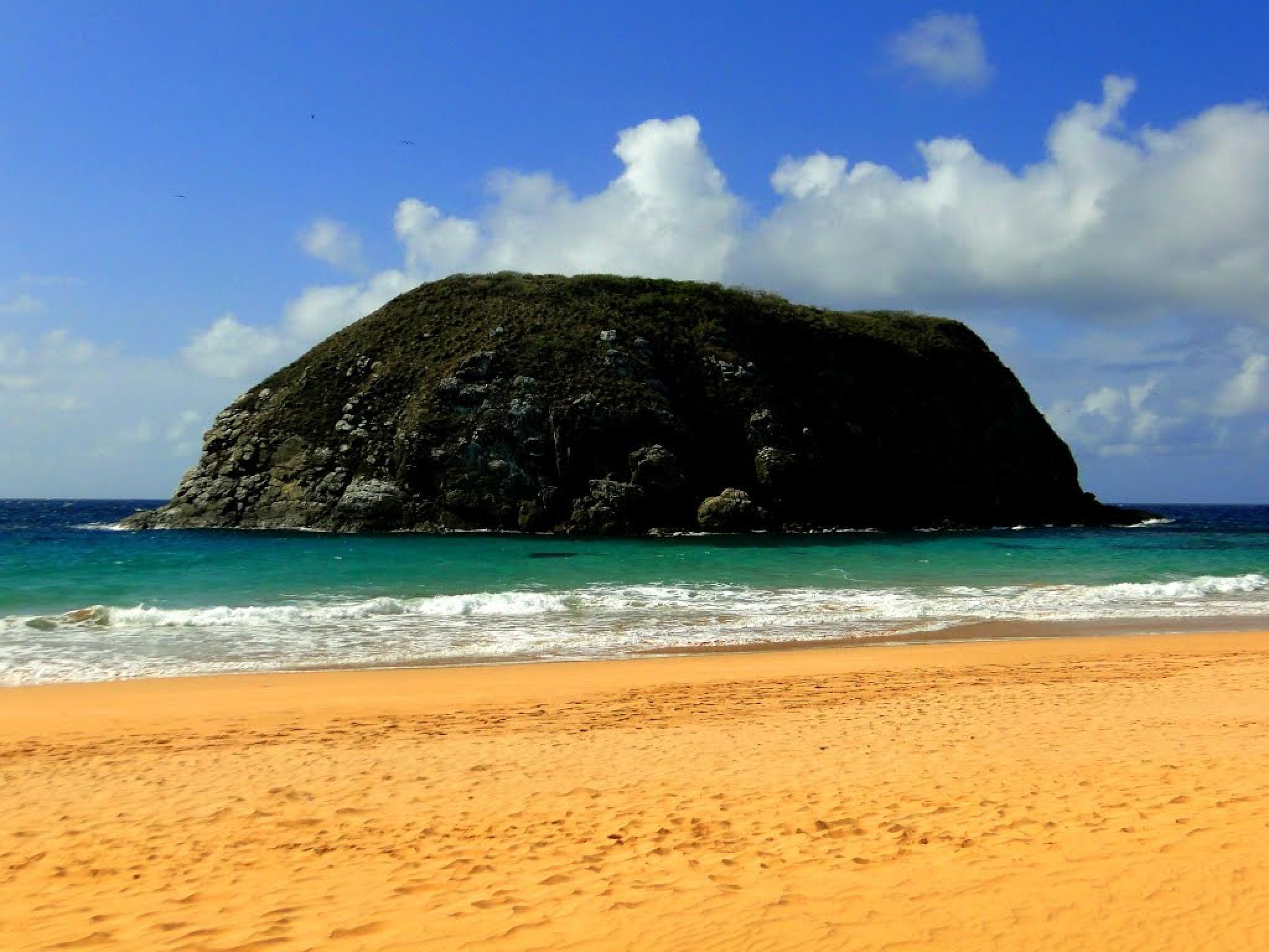 Fernando de Noronha Island, Brazil by Joselito Nardy Ribeiro