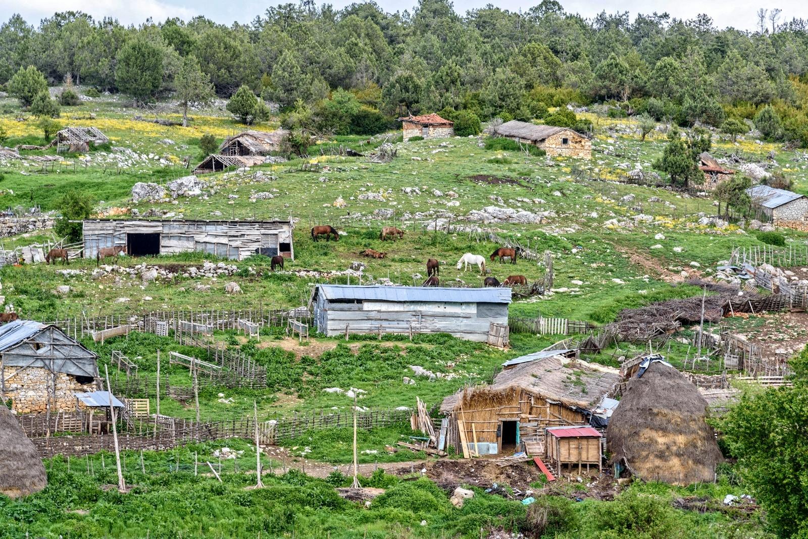 Rural. by Stamatis Vlahos