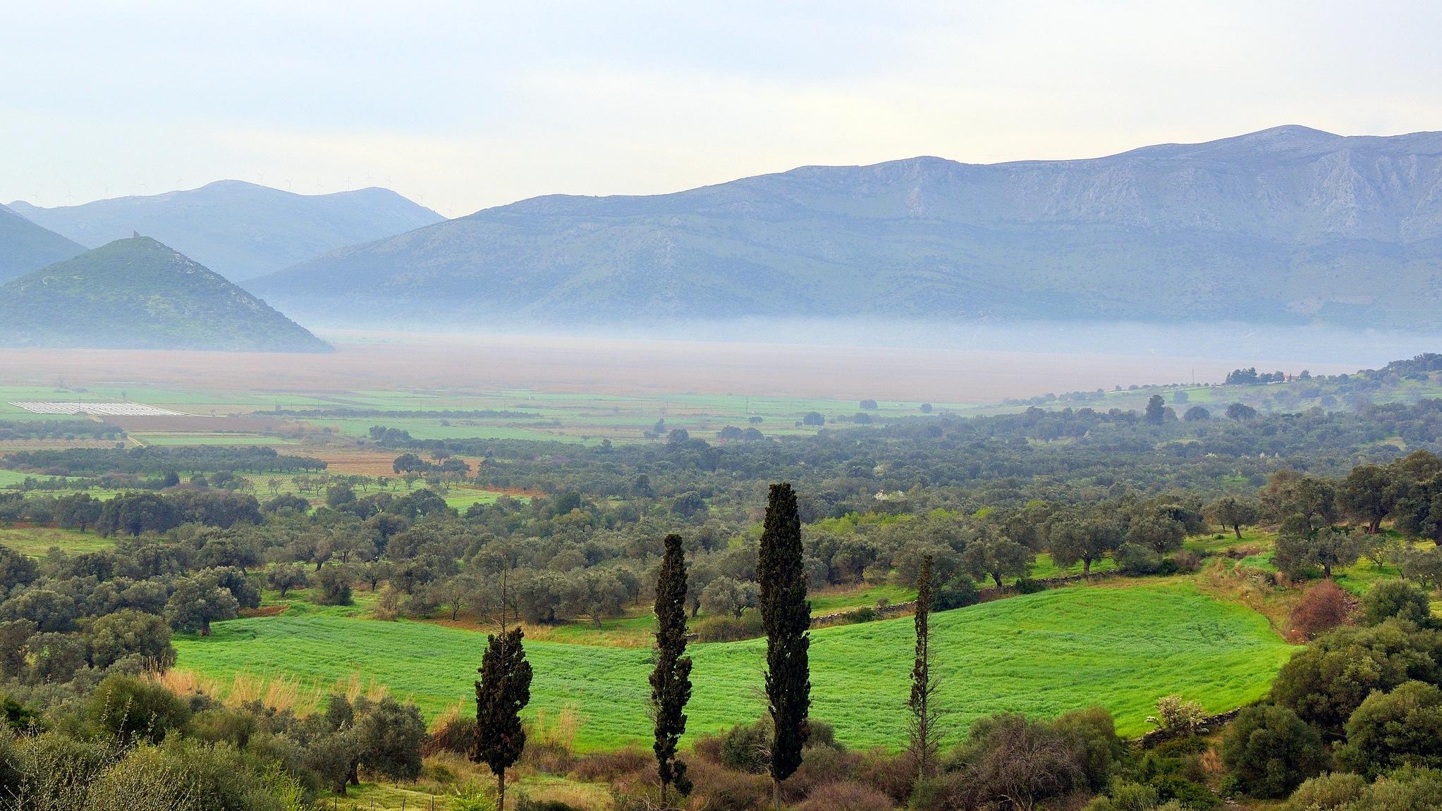 Misty plain. by Stamatis Vlahos