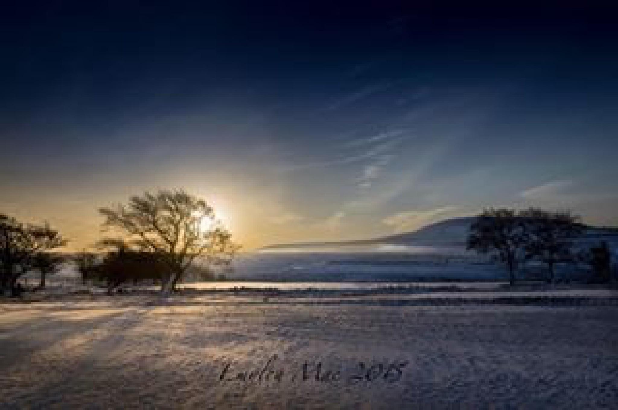 Winter walk by emyloumac