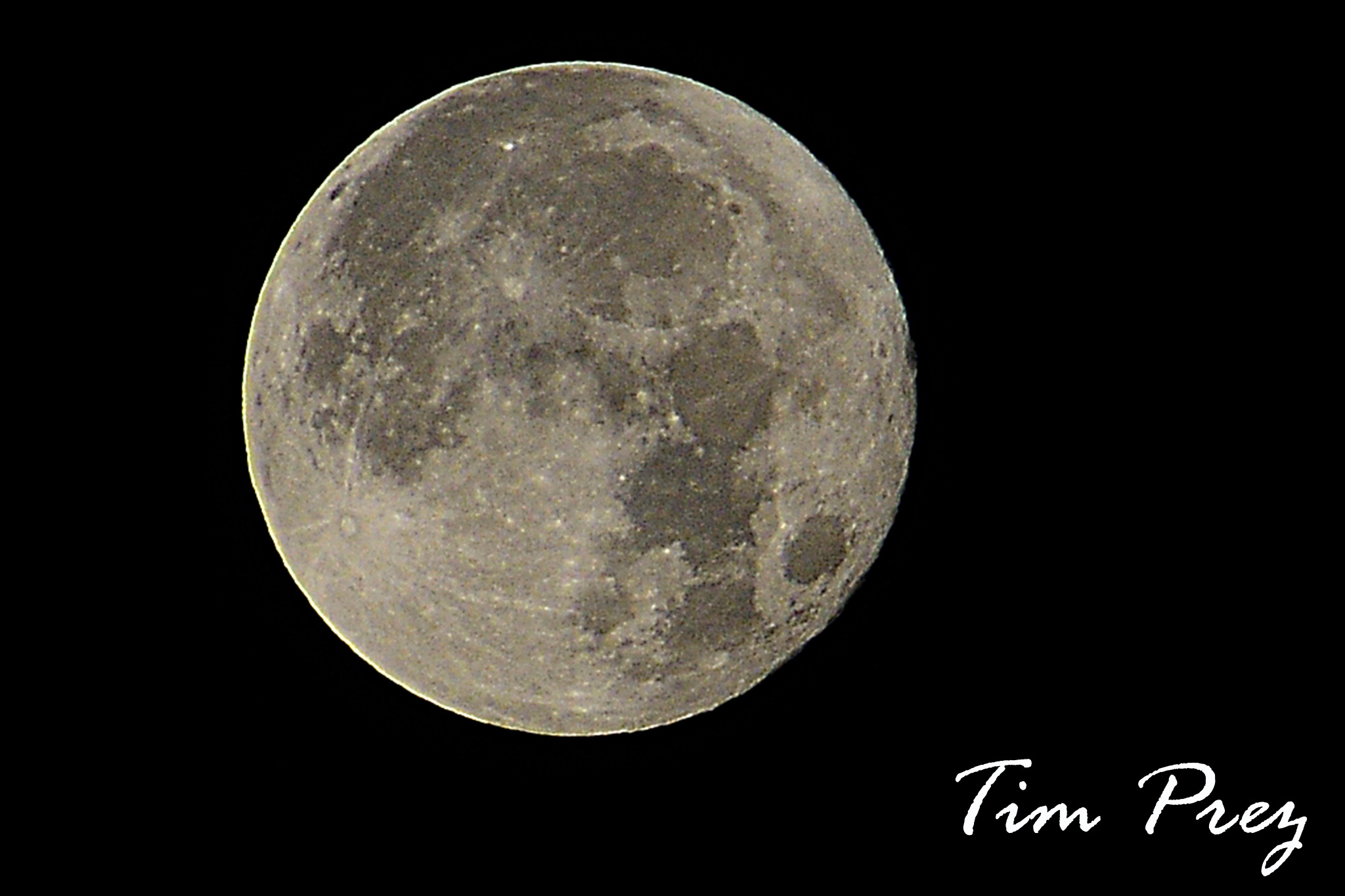 First full moon this month.. December 2016 by picturemeperfectphotography