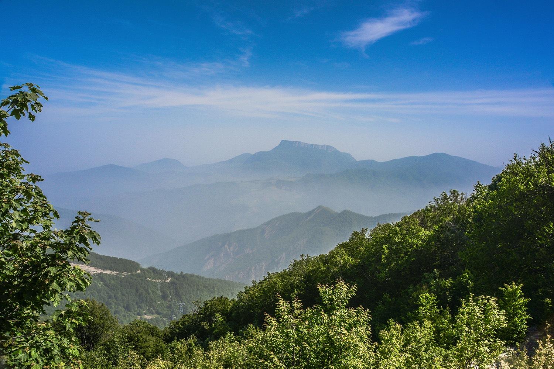jungle & mountain by mehdi mohammadi