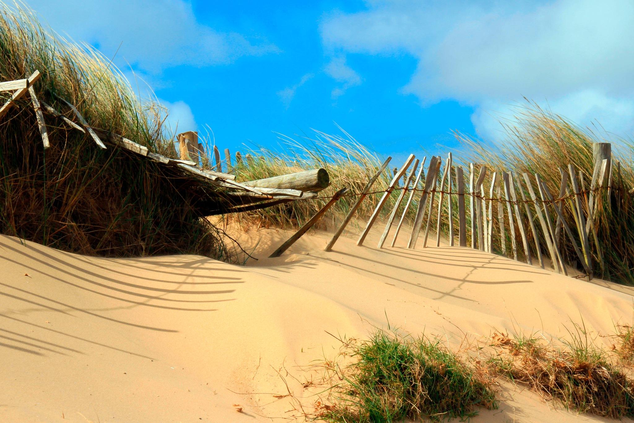Dunes in Norfolk by Martin Roper
