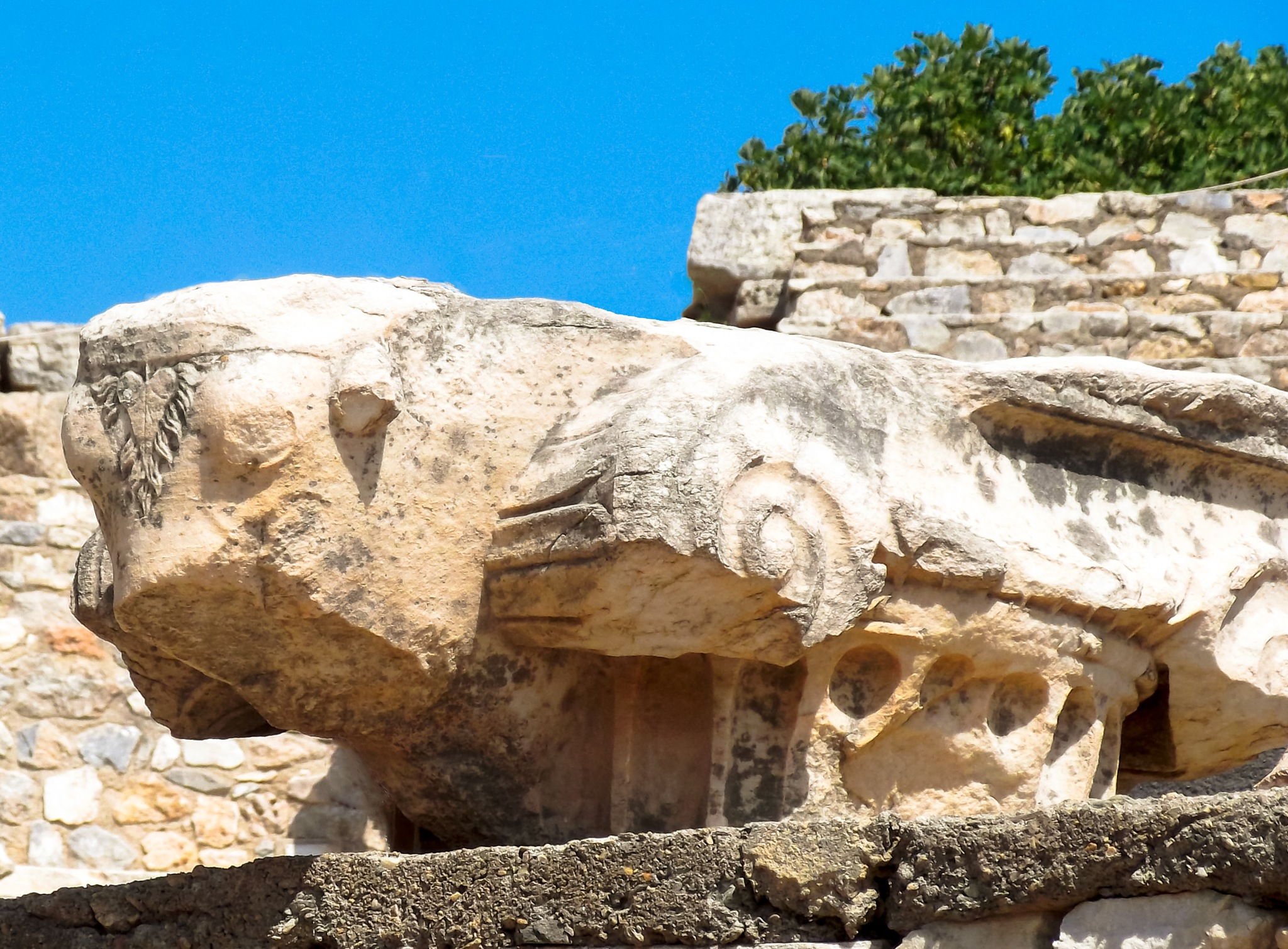 Carved Bull Ephesus - Turkey by Martin Roper