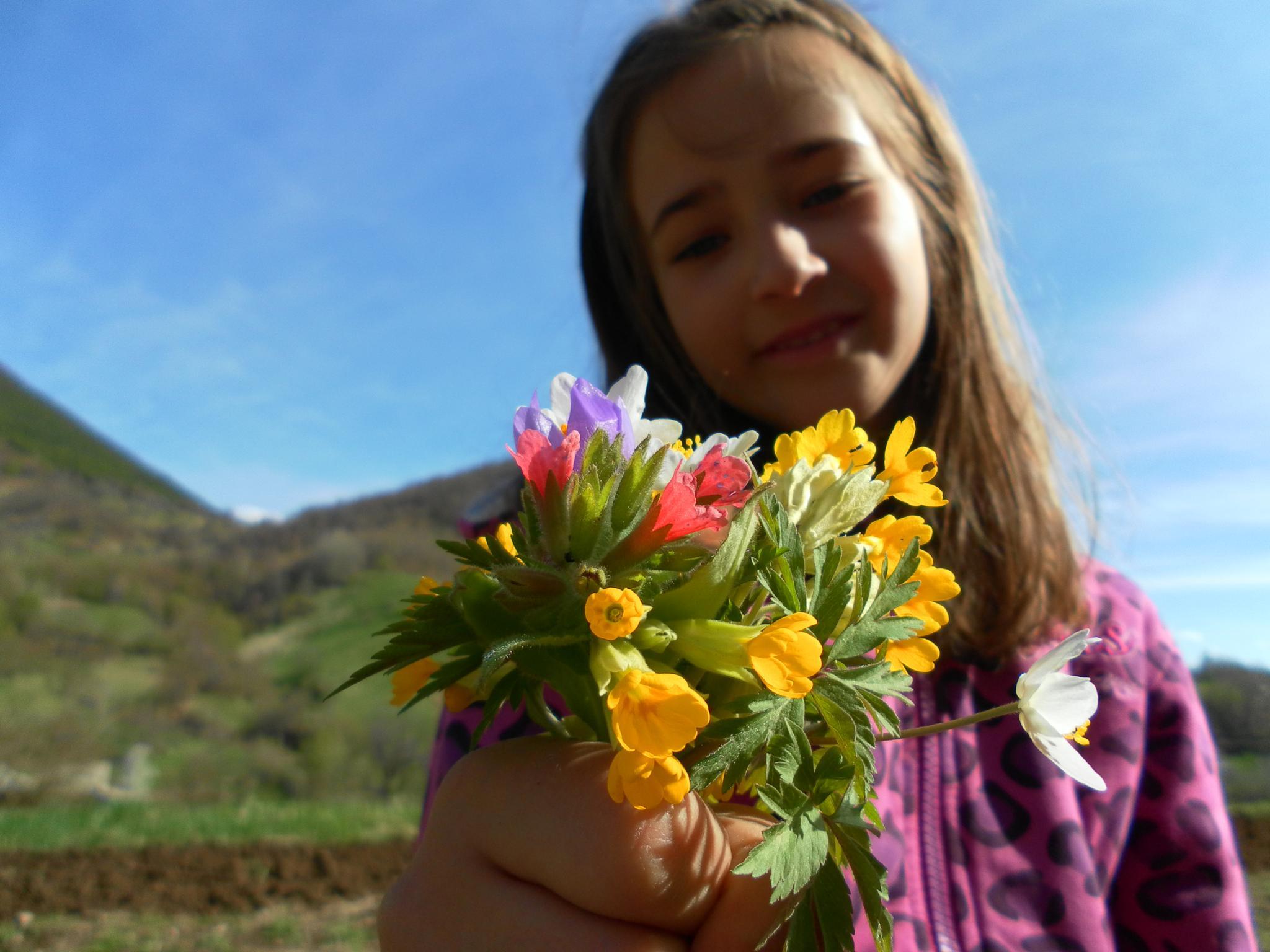 The colors of spring by Krasi Asenov