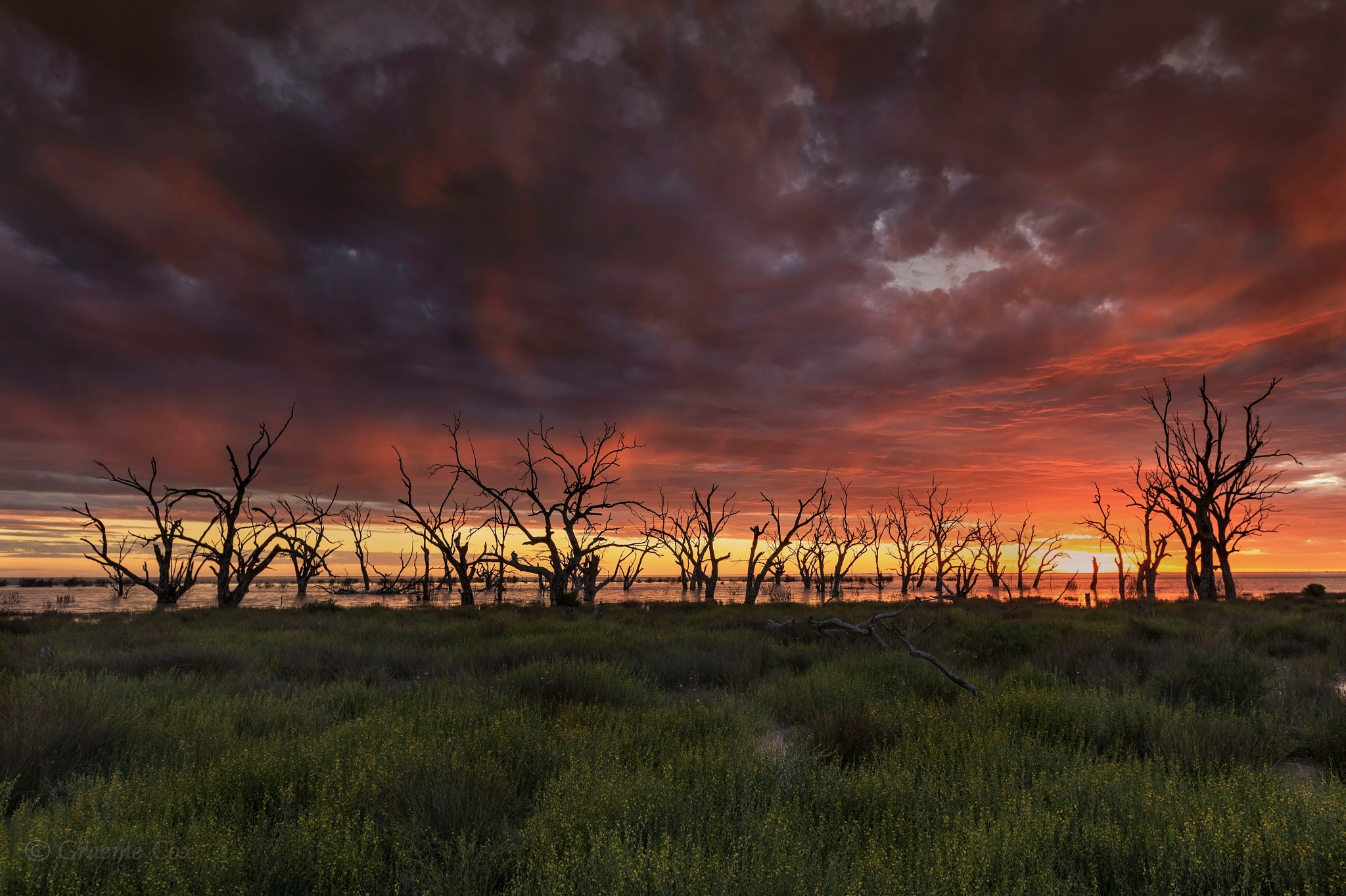 Menindee Lakes (OUTBACK NSW) by Graeme Cox