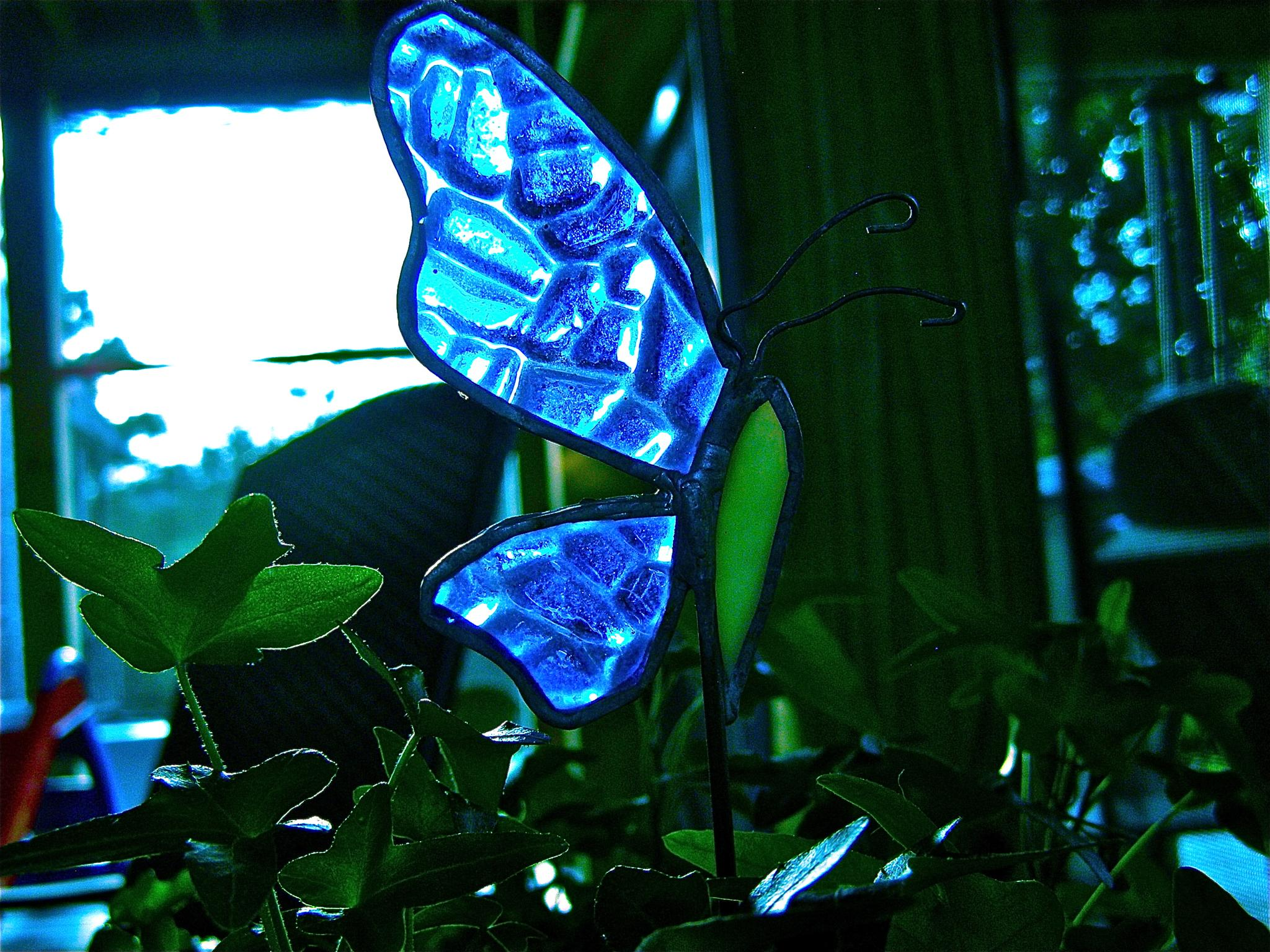 Stained Glass Butterfly by gloria.west.12