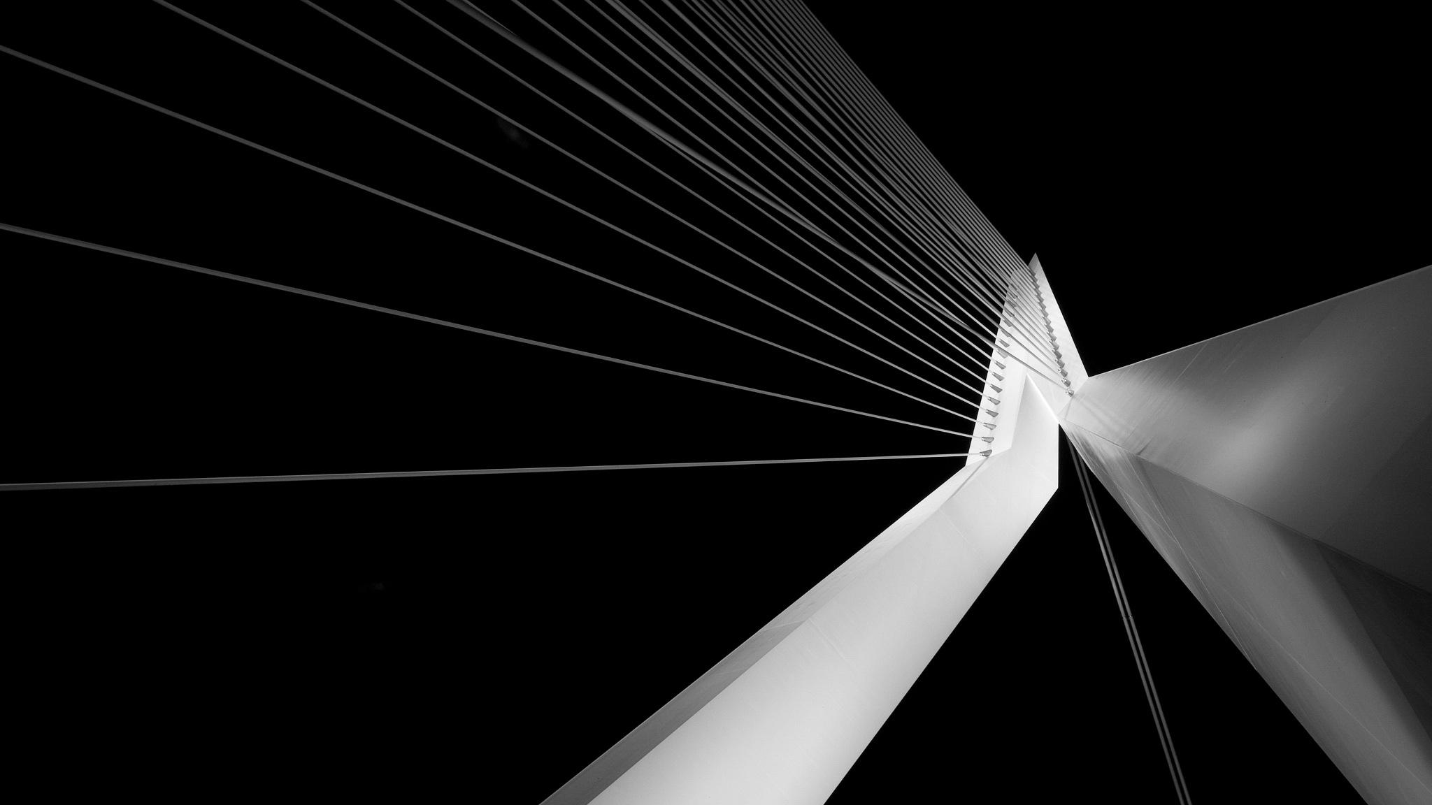 Erasmus bridge ... by Alex Verweij