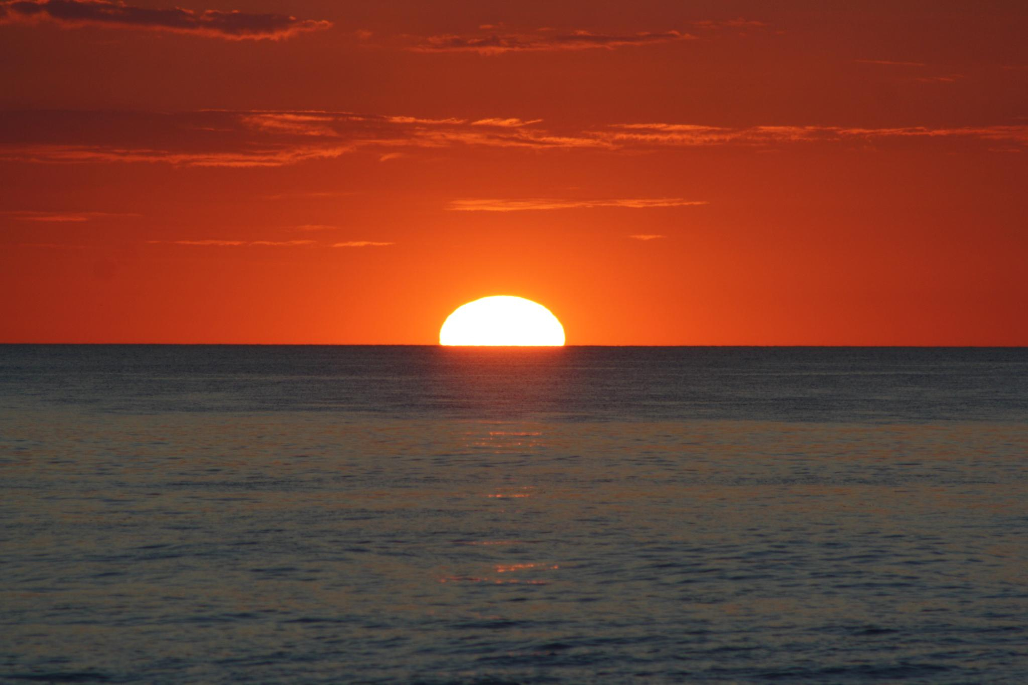 Photo in Sea and Sand #sunset #ocean #sun #orange sky