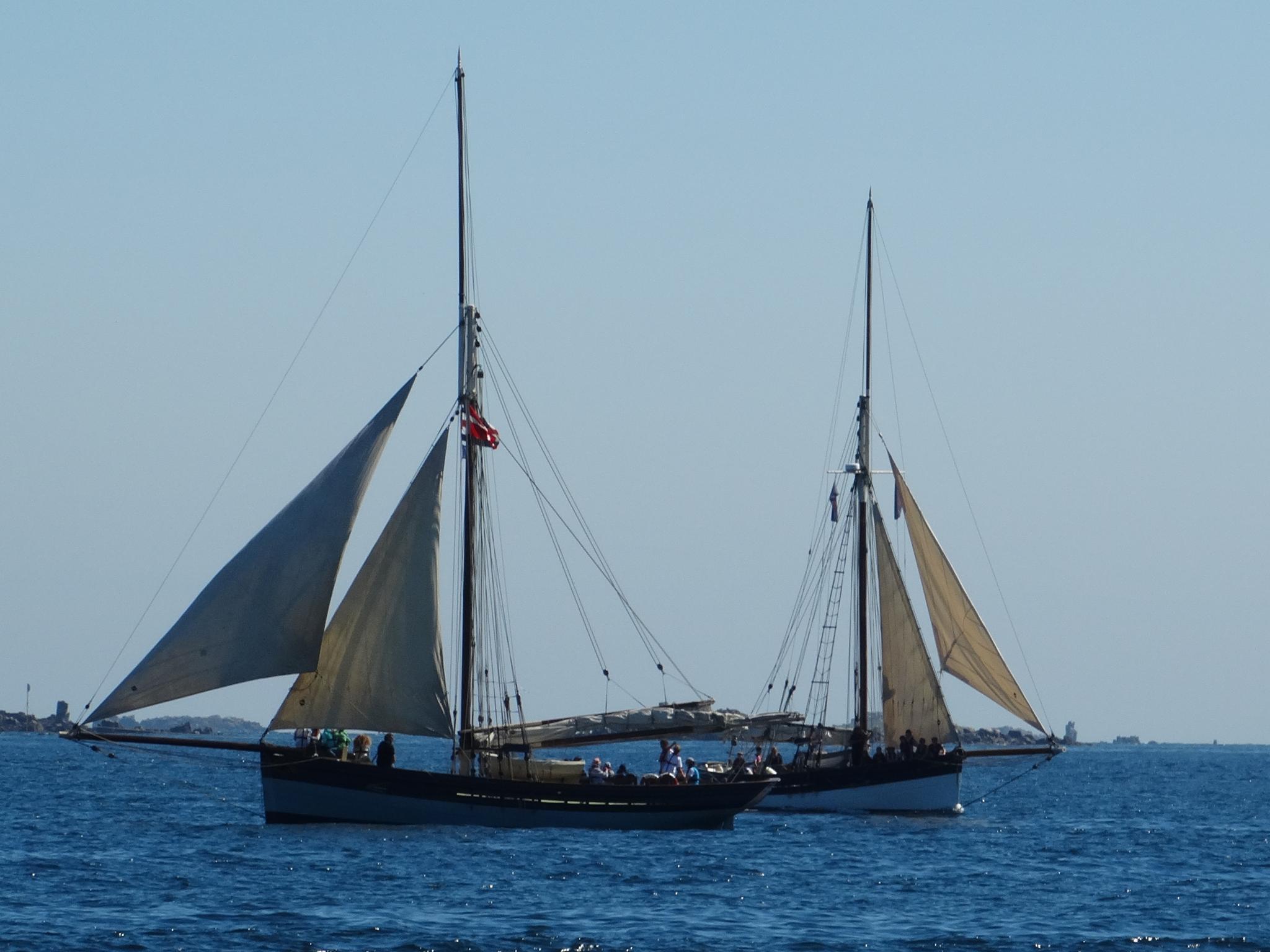 sailing the channel islands by wilma van heusden
