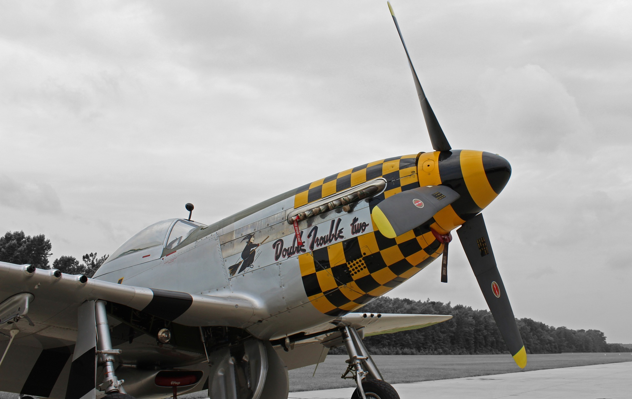 P-51 Mustang by Jennifer Stafford