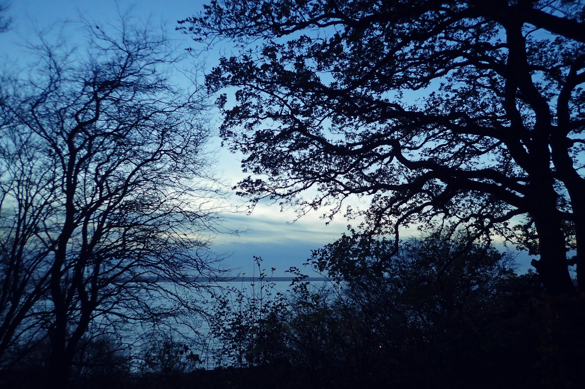 Autumn evening by bemmy