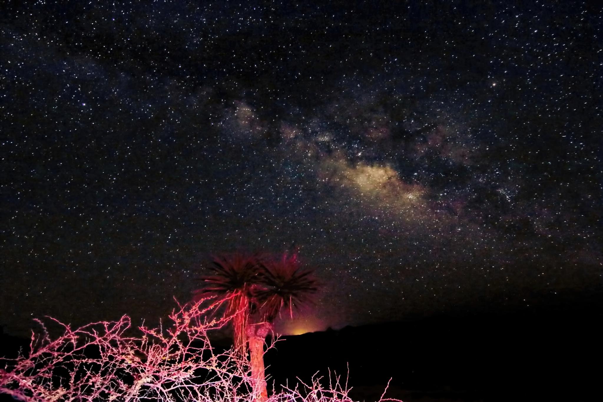 Milky Way & Light Painting by daniel.luna.77920
