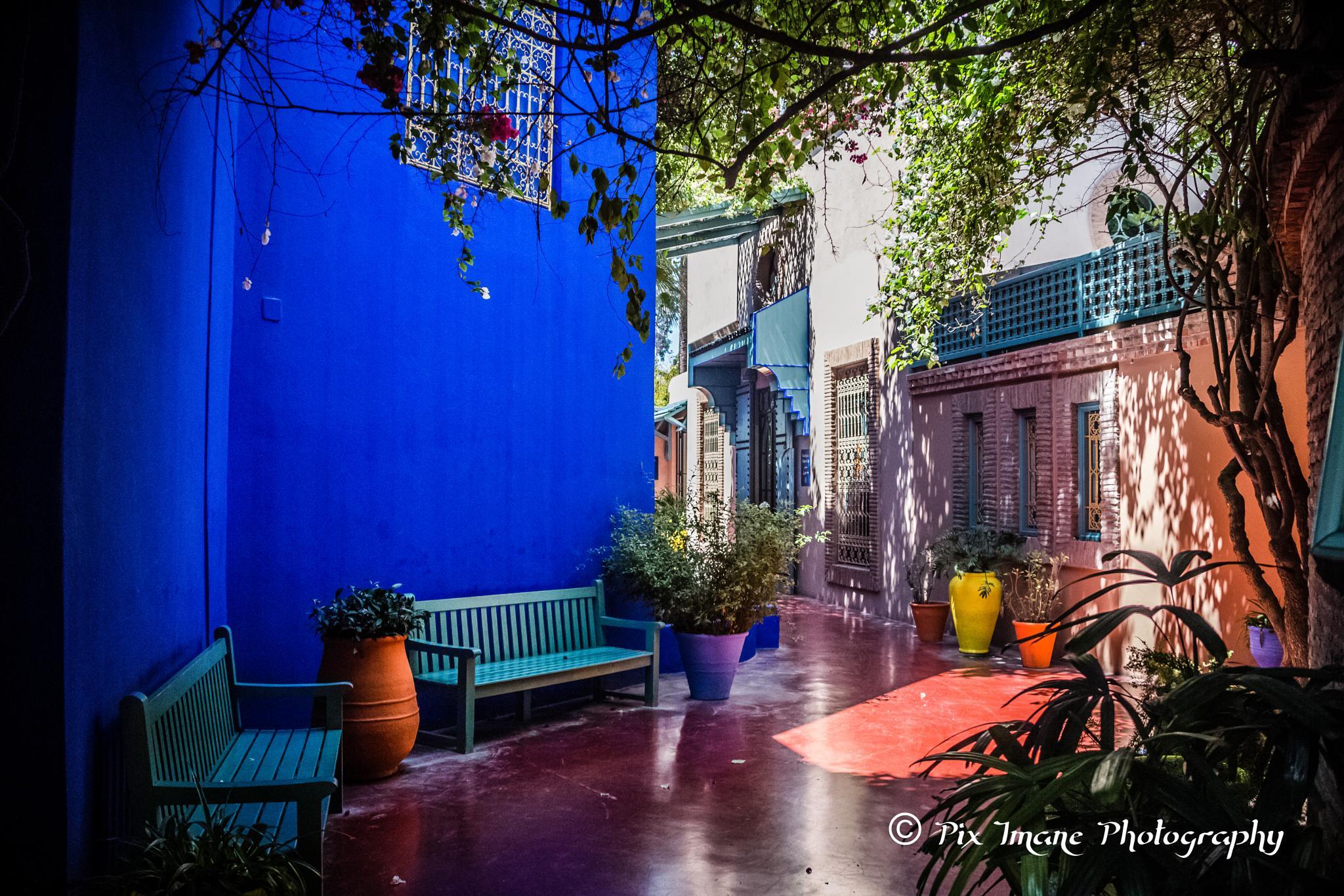 Jardin Majorelle Marrakech Morocco by PixImane Photography
