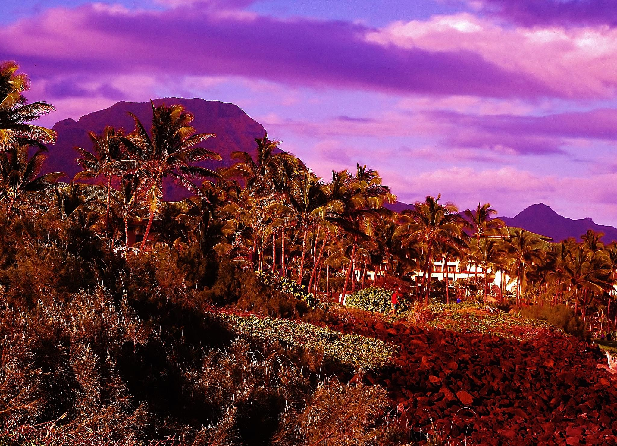 HAWAII USA BY PAUL CRIMI. by paulcrimi178