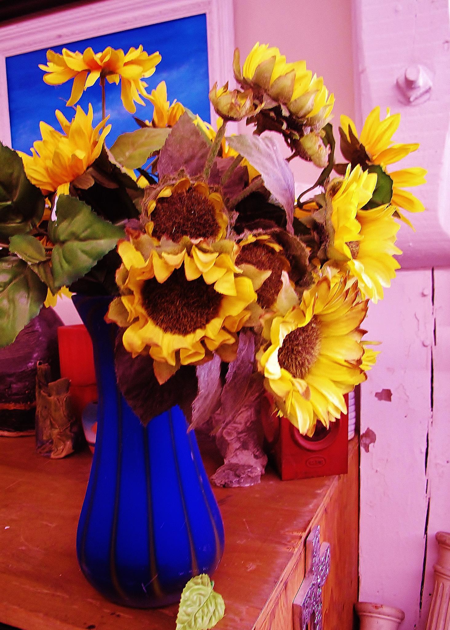 Photo in Fine Art #www.paulcrimifinearts.com sunf