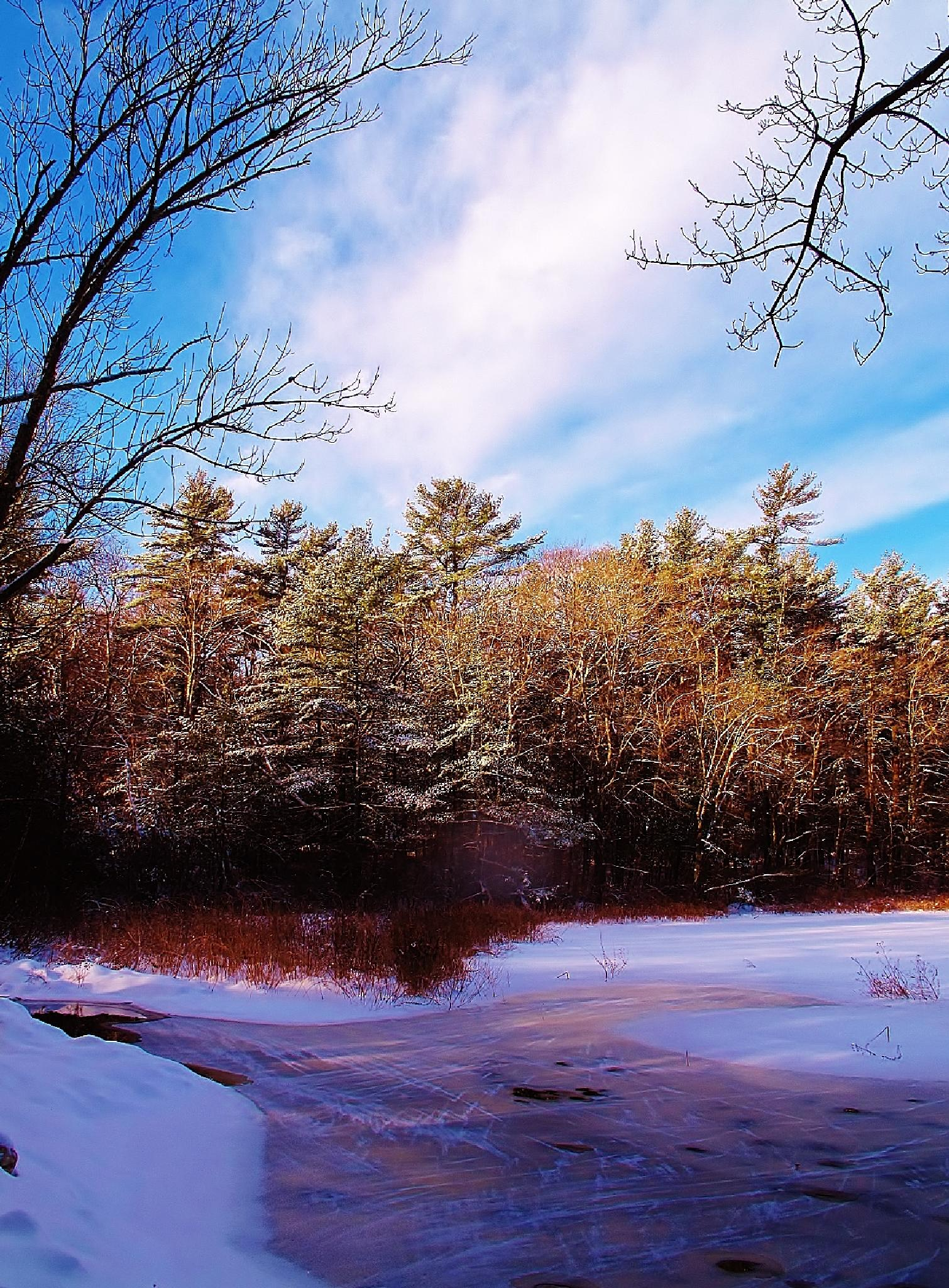 ice on the pond by www.paulcrimifinearts.com by paulcrimi178