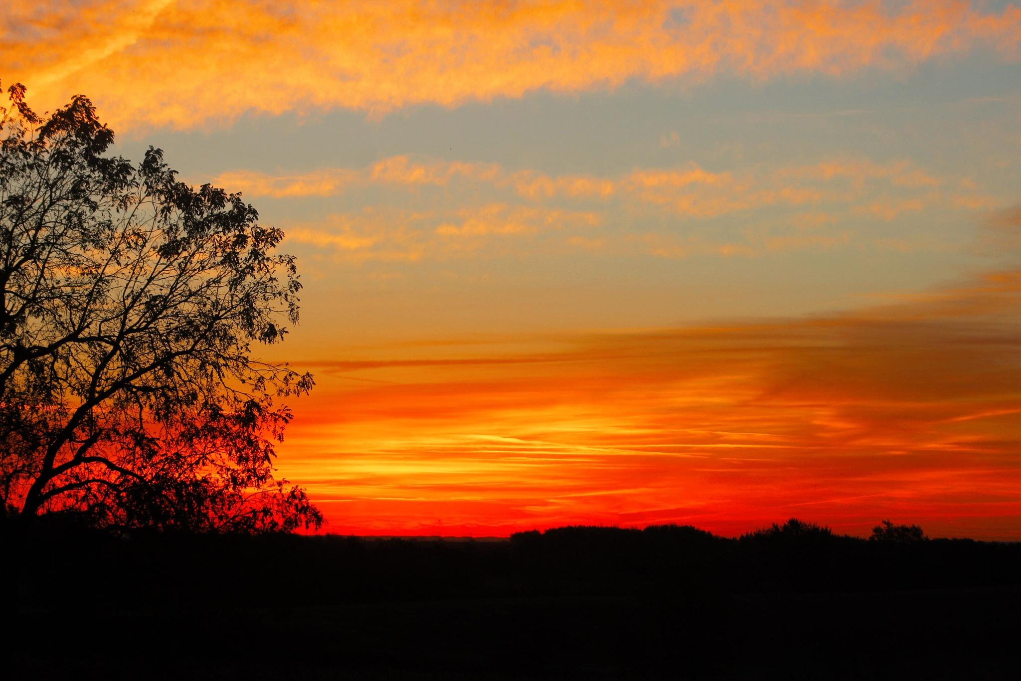 illinois sunsert by Quinn