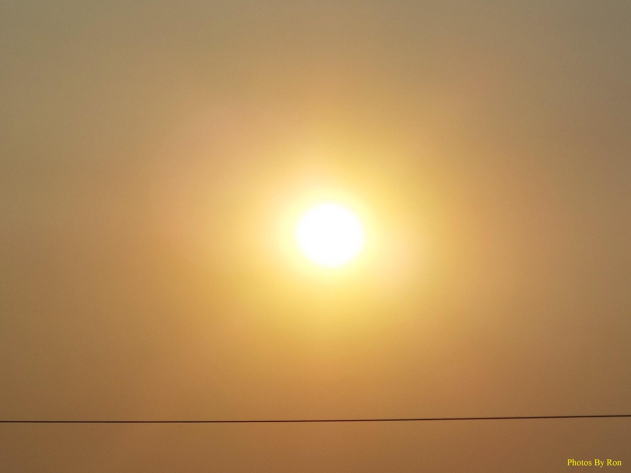 """The Smokey Sun Above The Wire"" by Ron Berkley"