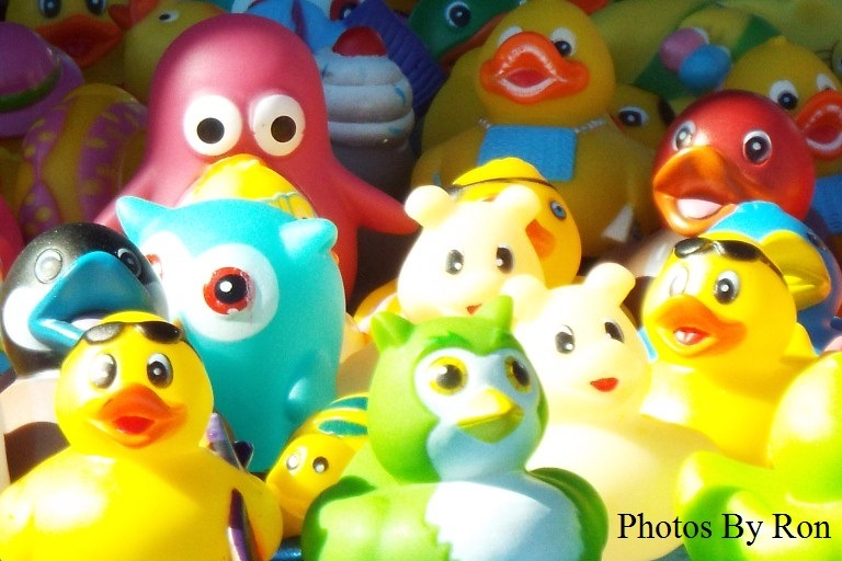 """""""Everything's Just Ducky"""" by Ron Berkley"""