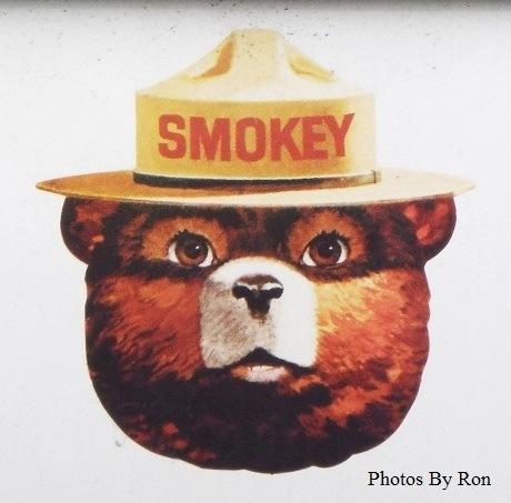 """""""A Smokey Report"""" by Ron Berkley"""