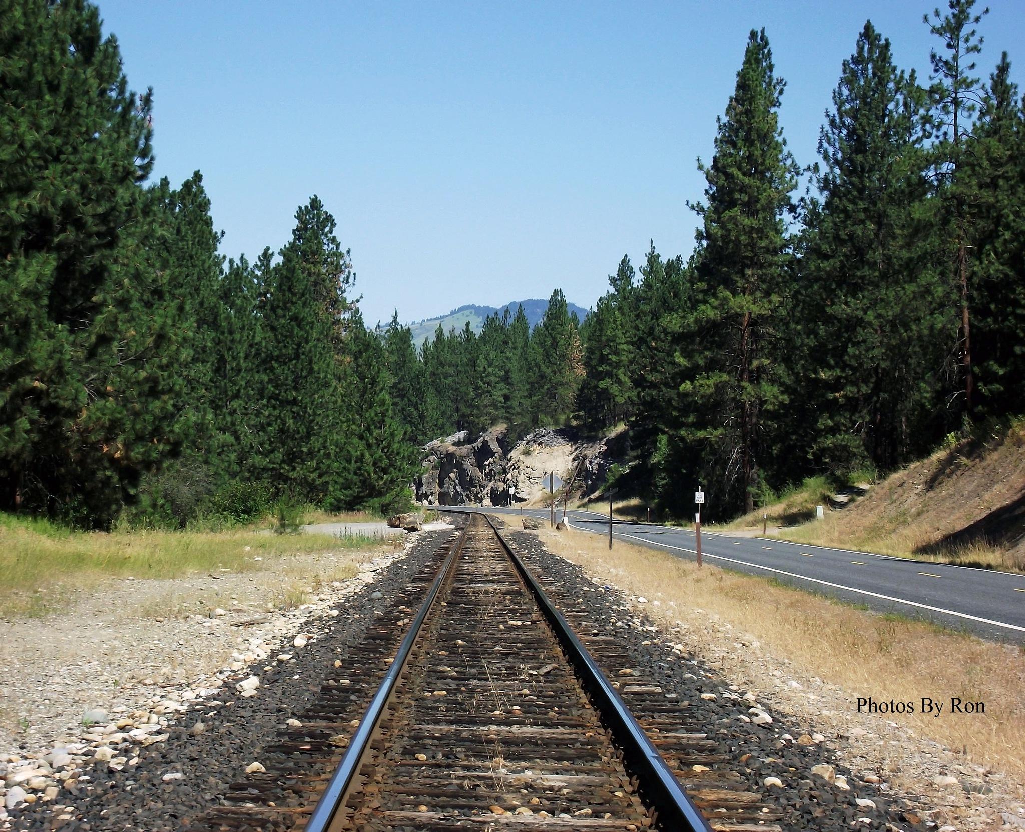 """Tracks"" by Ron Berkley"