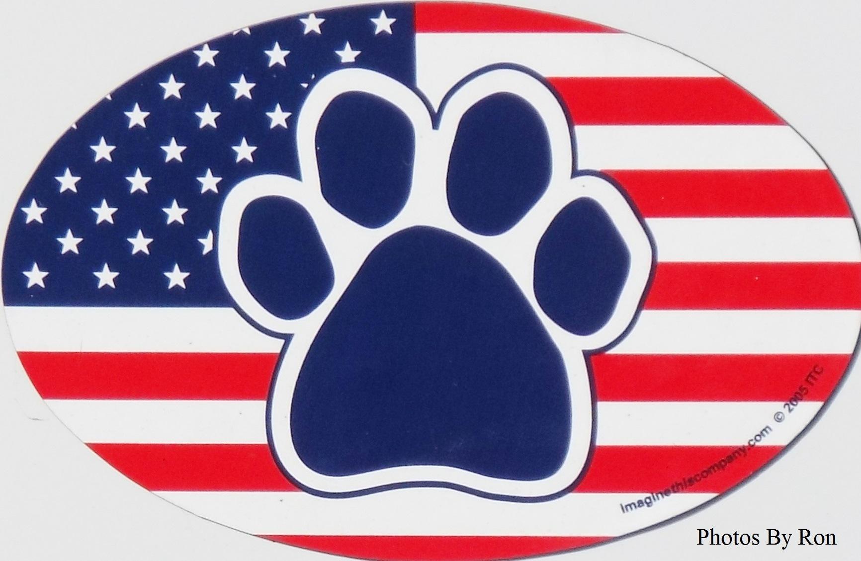 """American Beagle"" by Ron Berkley"