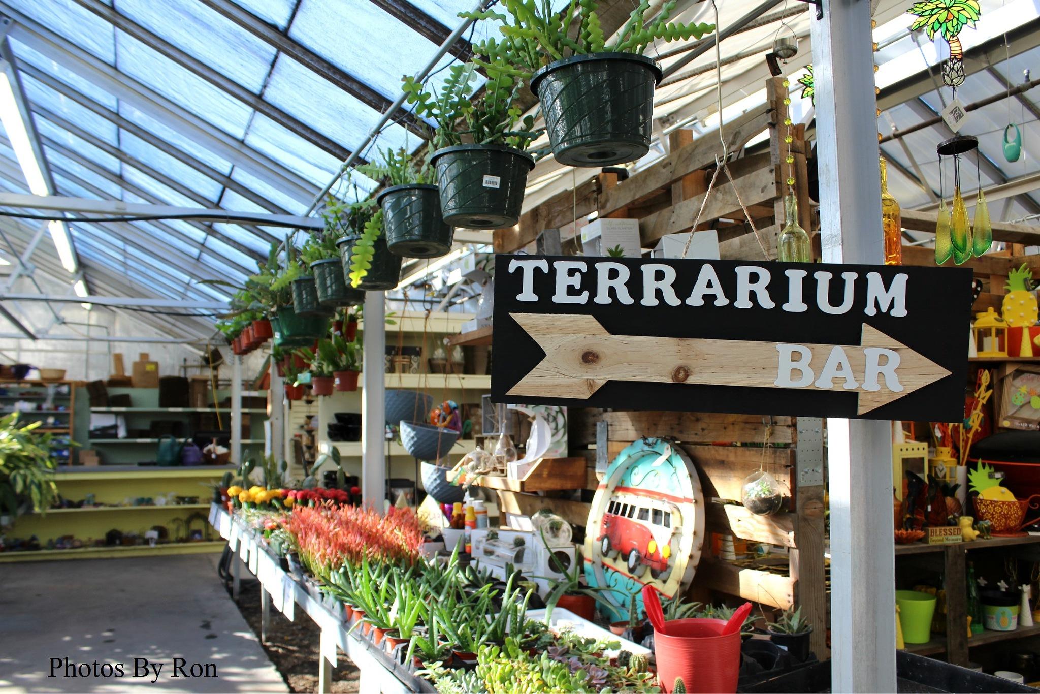 """""""Plant Farm Terrarium Bar That-A-""""Way""""  by Ron Berkley"""